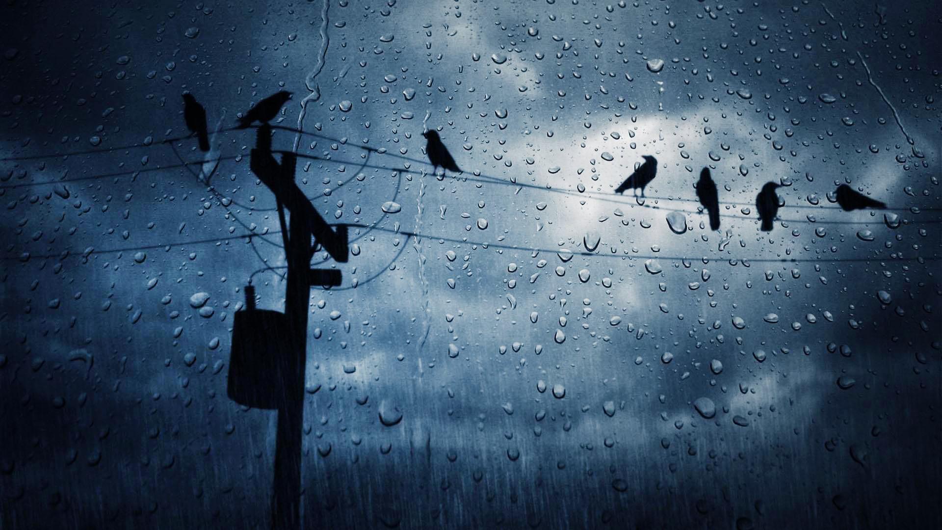 .com/nature/ocean-beach-rain-storm-