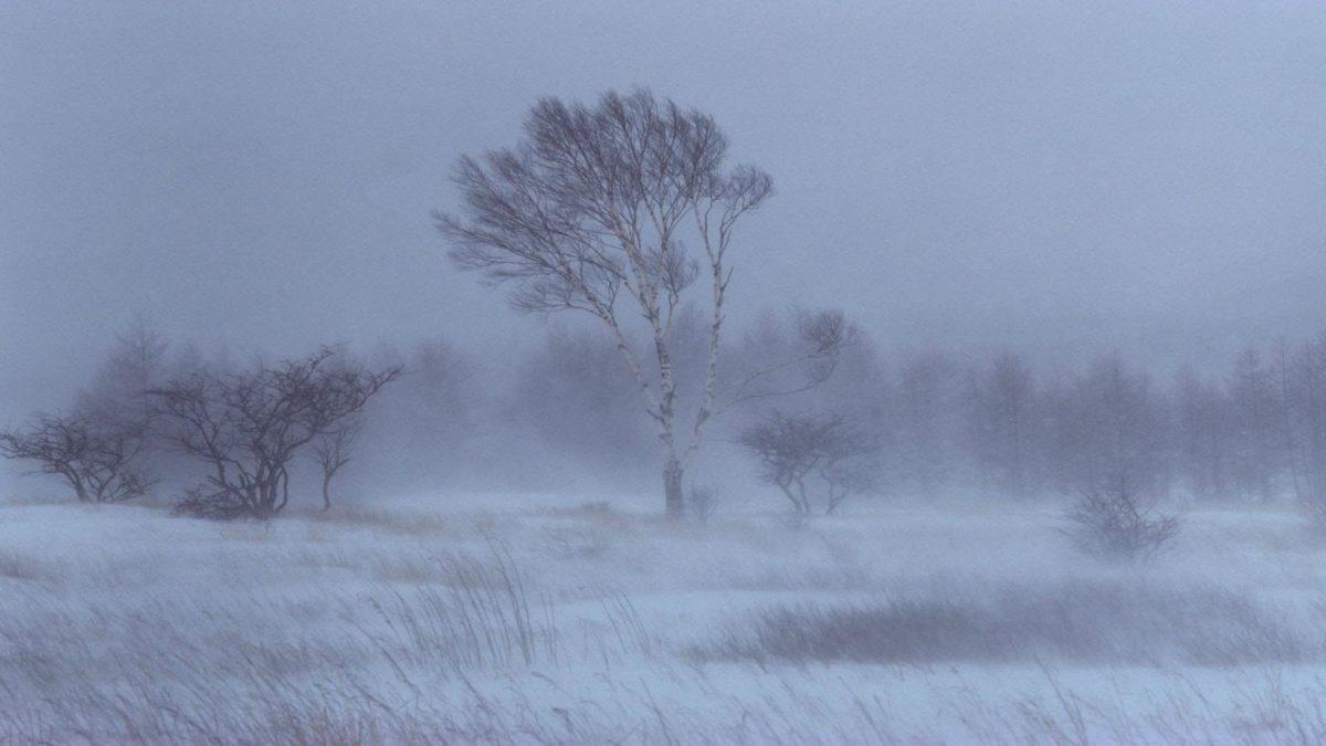 Snow Storm Desktop Wallpaper – HD Wallpapers Backgrounds of Your .