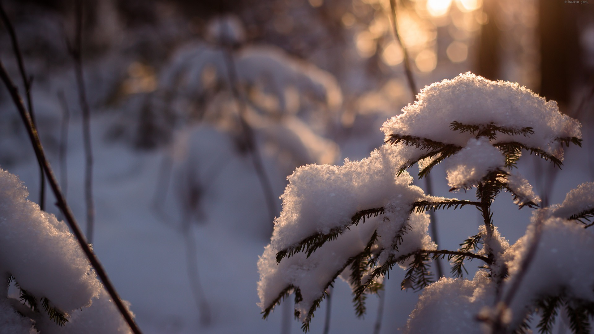 Winter HD 1080p Wallpapers Download Archives – HD Wallpapers Source .