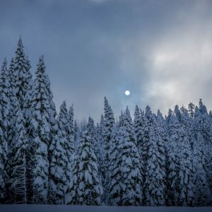 Winter Wallpaper HD