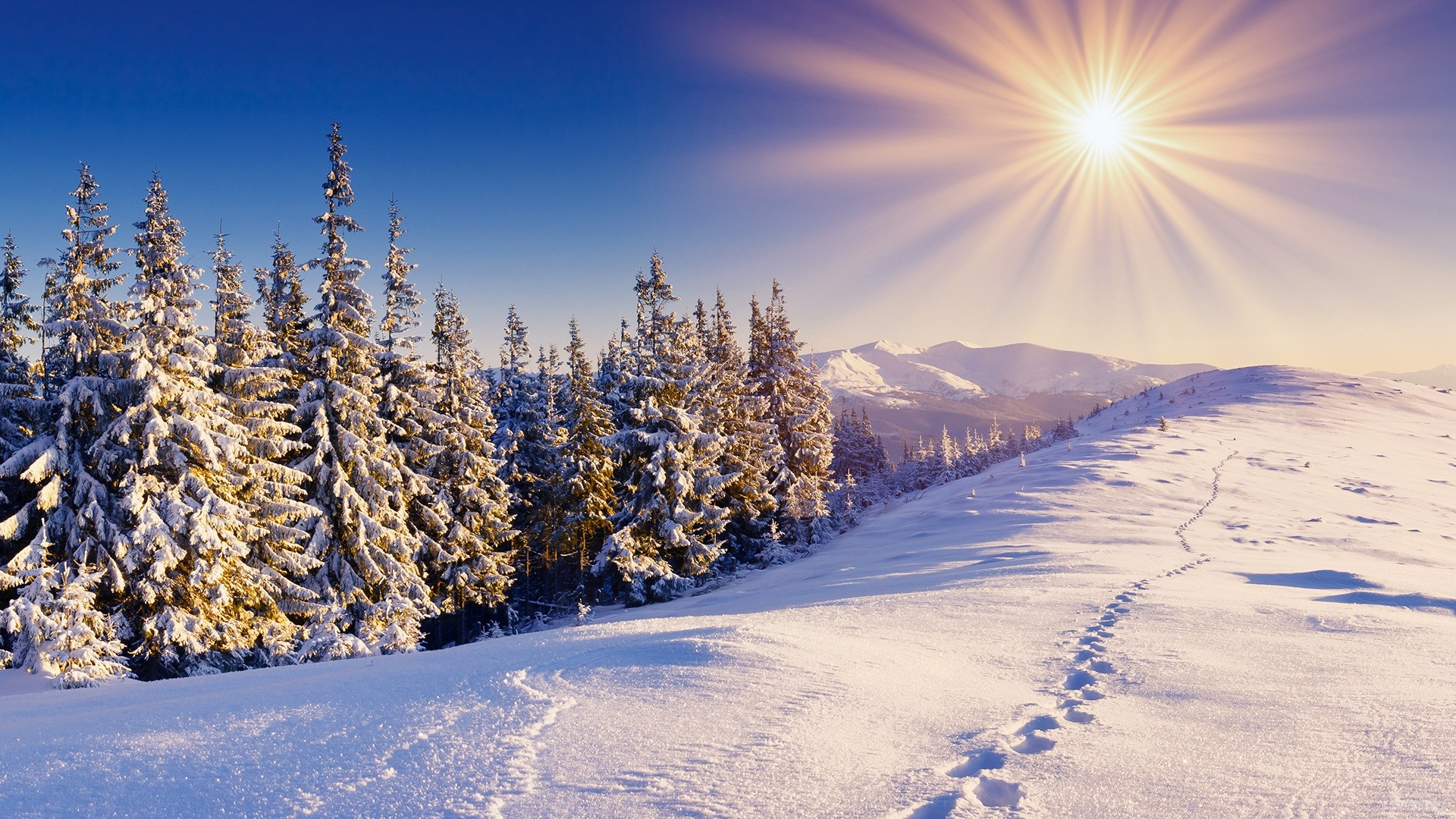Winter Sun Wallpaper Winter Nature (65 Wallpapers)