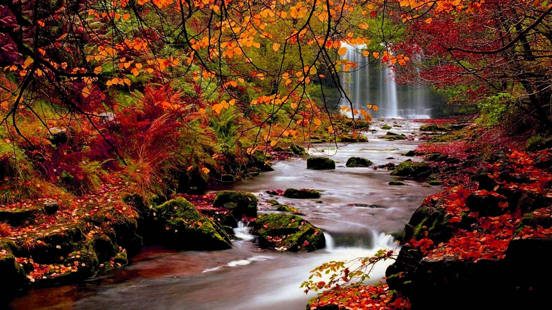 Image: Beautiful Fall Scenery Wallpaper