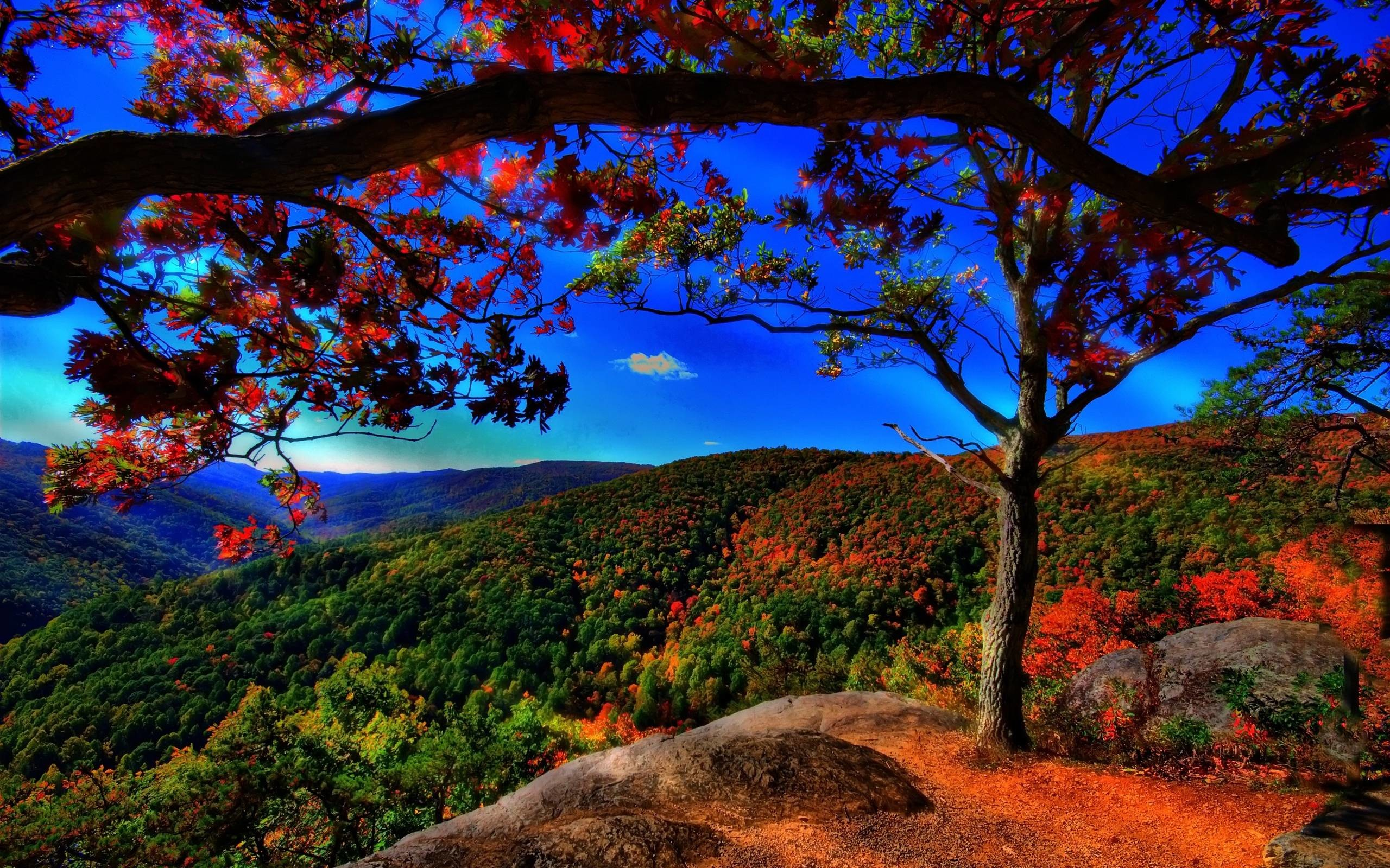 autumn free wallpaper autumn landscape – flipped | Images And ..