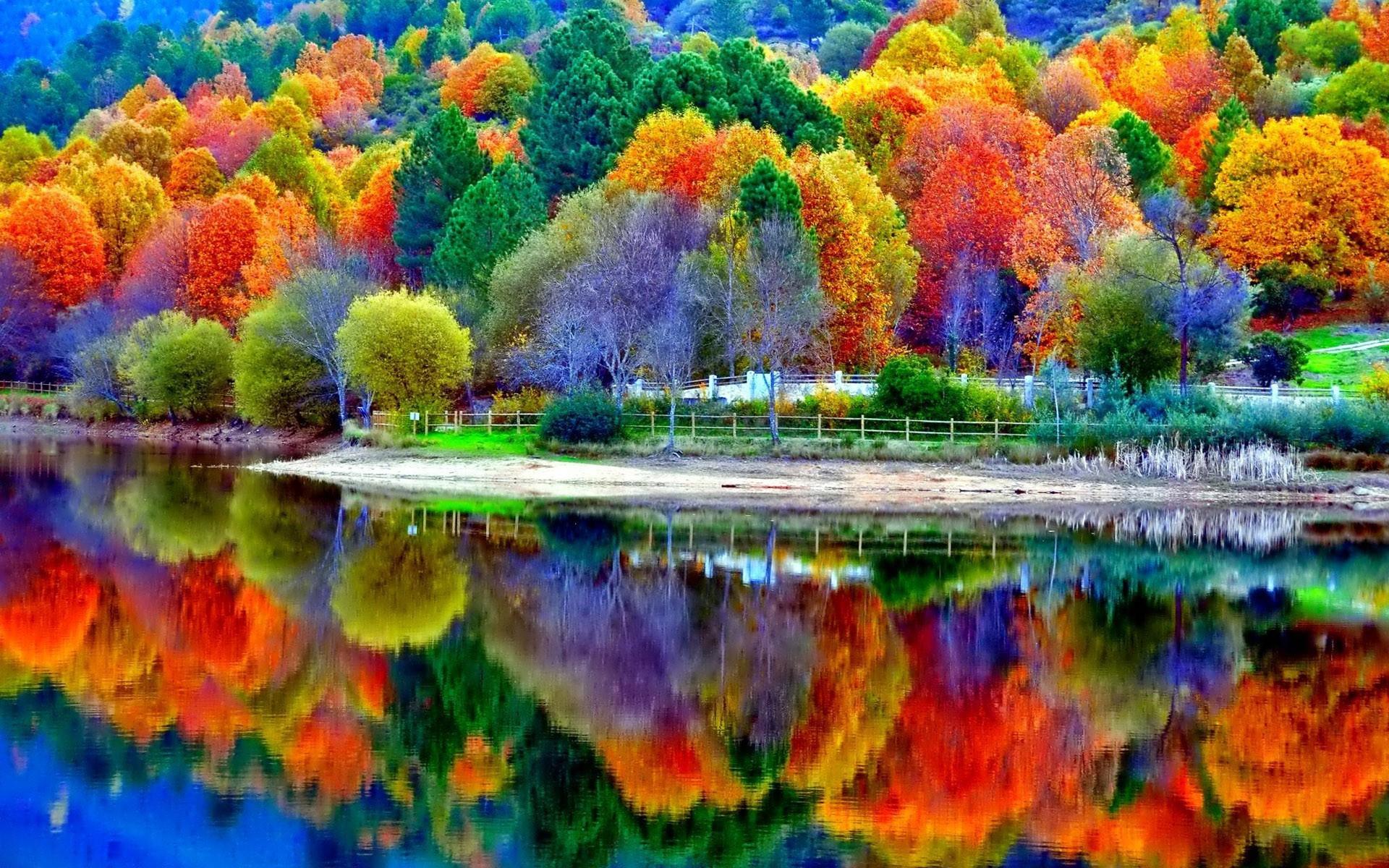 Beautiful Autumn Lake Scenery Wallpaper