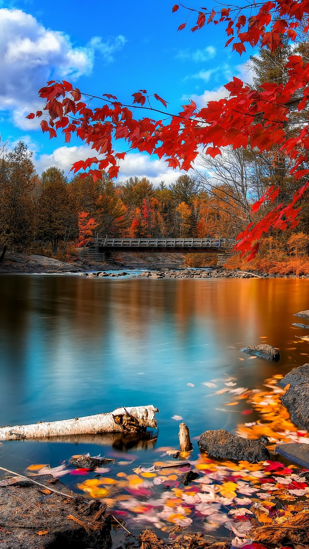 Autumn scenery – Tap to see more beautiful nature wallpapers! – @mobile9