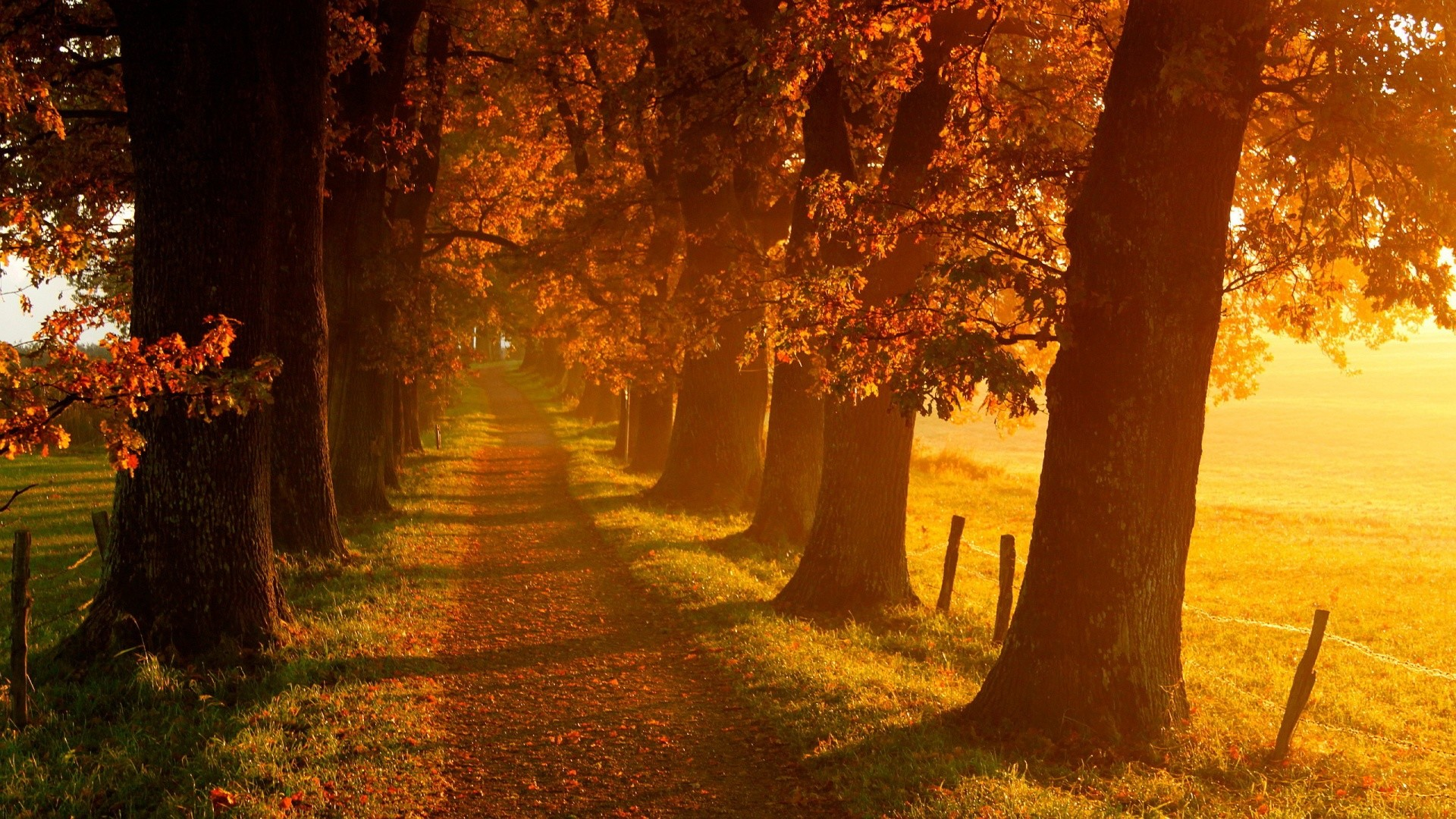 0 Autumn Wallpaper Hd Collection Autumn Wallpapers, HDQ Beautiful Autumn  Images amp Wallpapers .