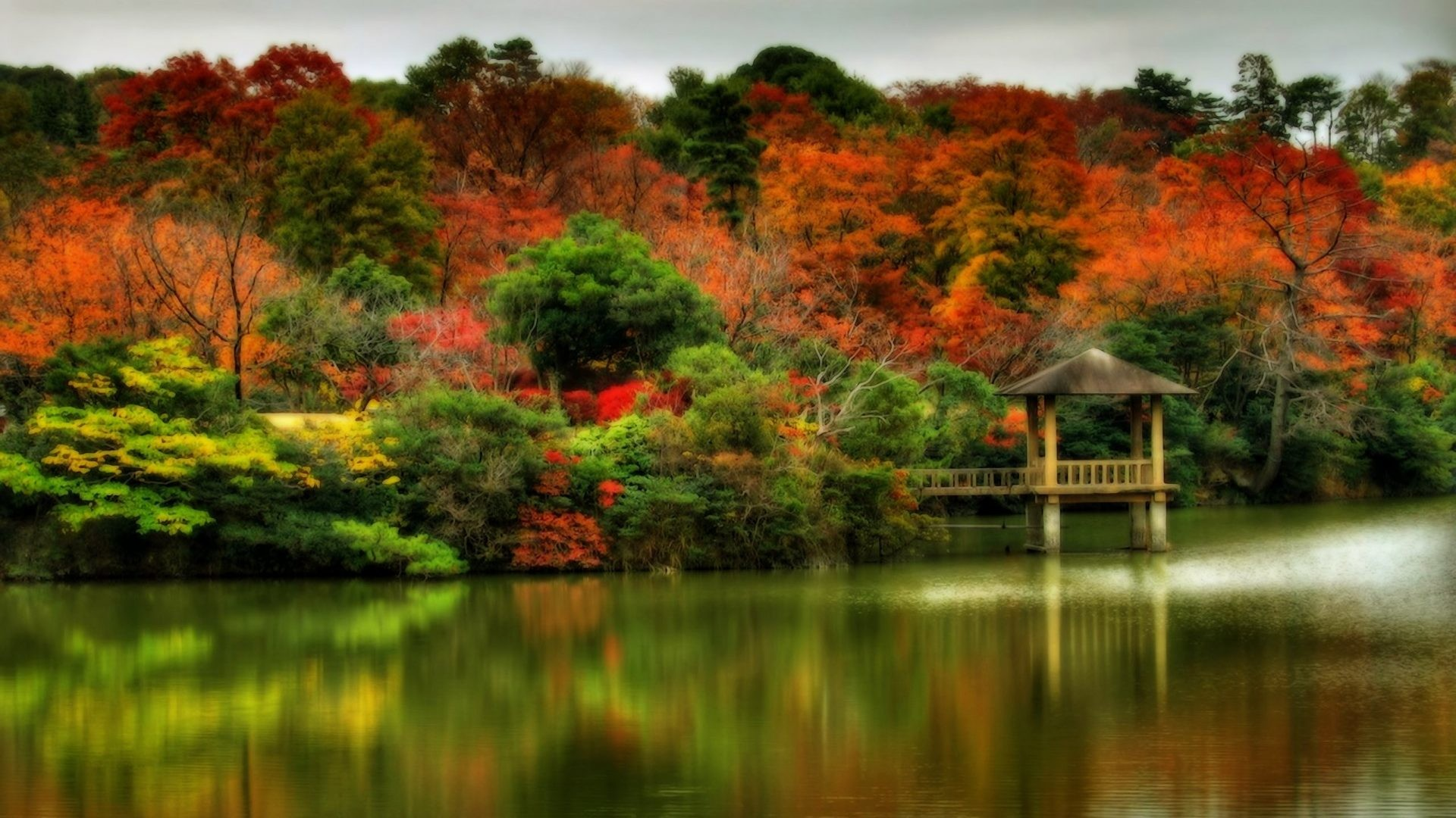 Autumn Tag – Tree Leaf Forest Leaves Autumn Landscape Nature Fall Best  Pictures Wallpapers for HD