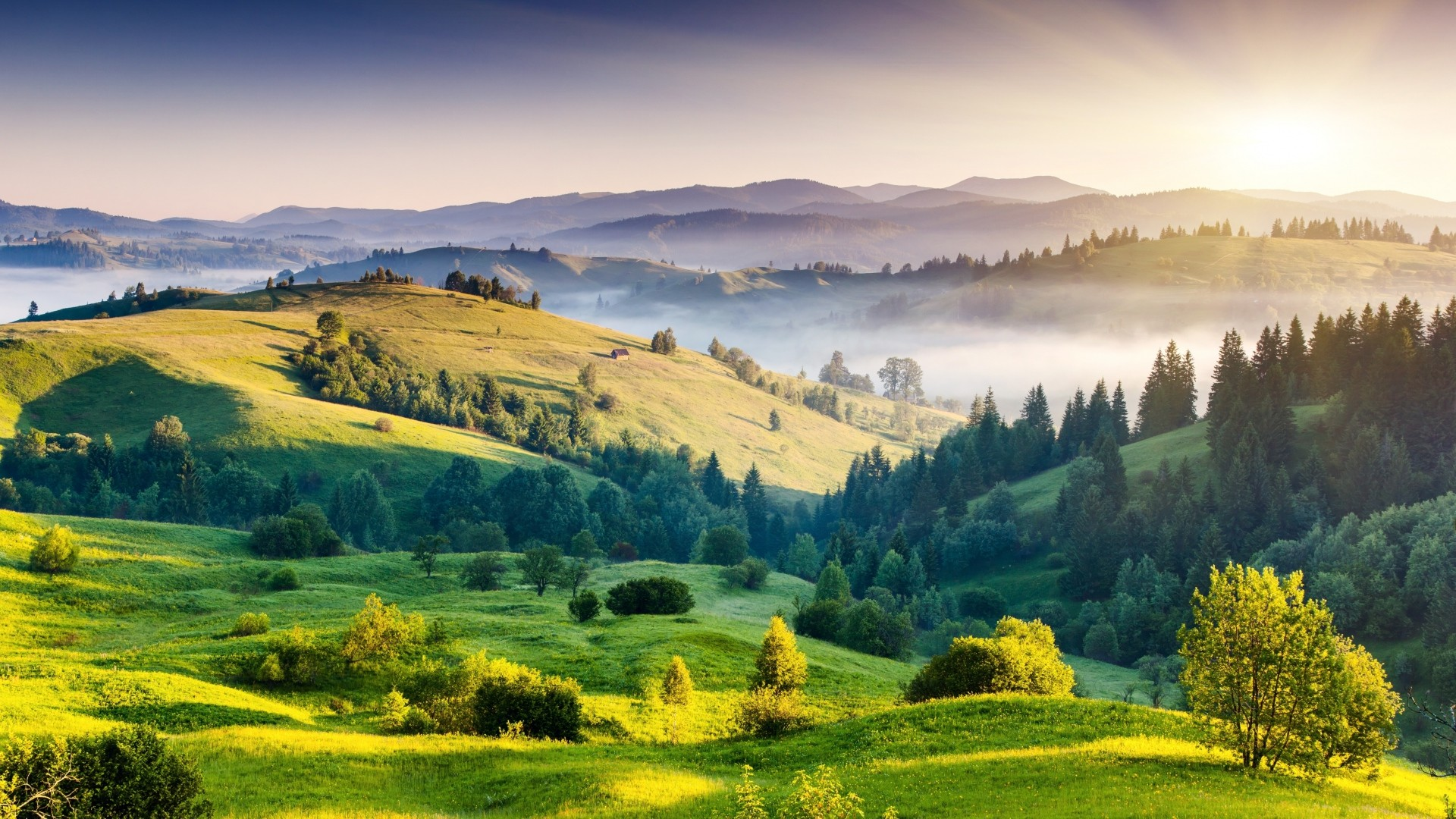 Preview wallpaper landscape, nature, hills, trees, foliage, fog, sunrise,