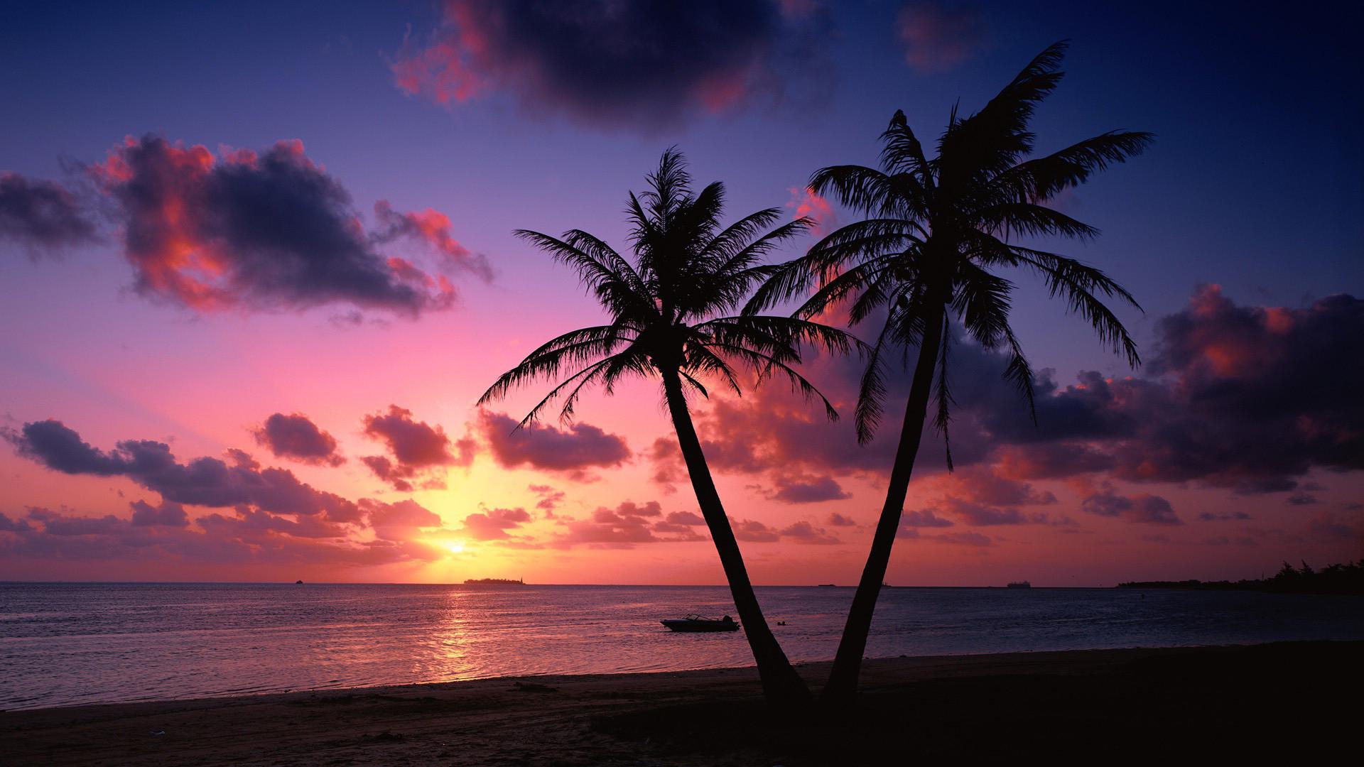 Sunset Tropical Beach