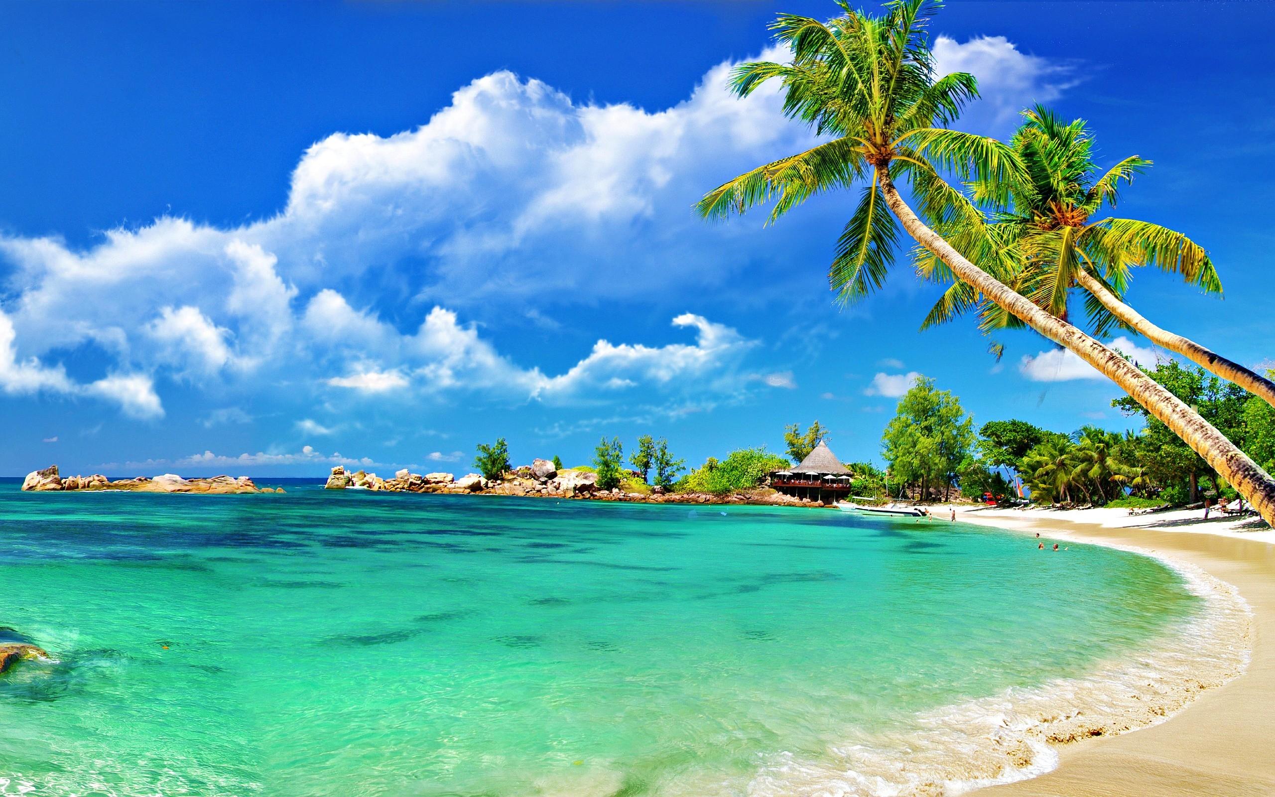 wallpaper, Tropical Beach Wallpapers hd wallpaper, background desktop .