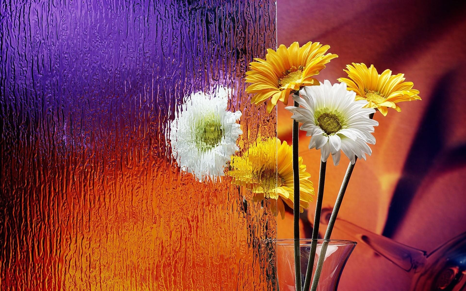 34 Hd Wallpaper For Desktop   Gallery of Backgrounds Free .
