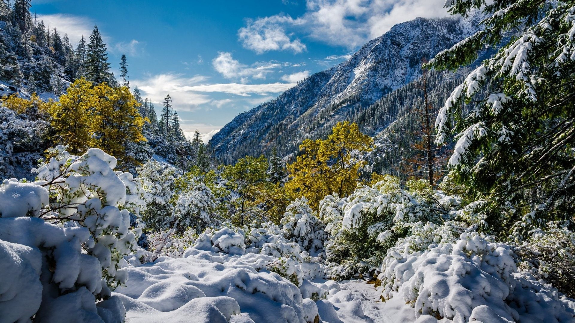 Mountains – Snow Winter Landscape Nature Live Wallpaper Android Free  Download for HD 16:9