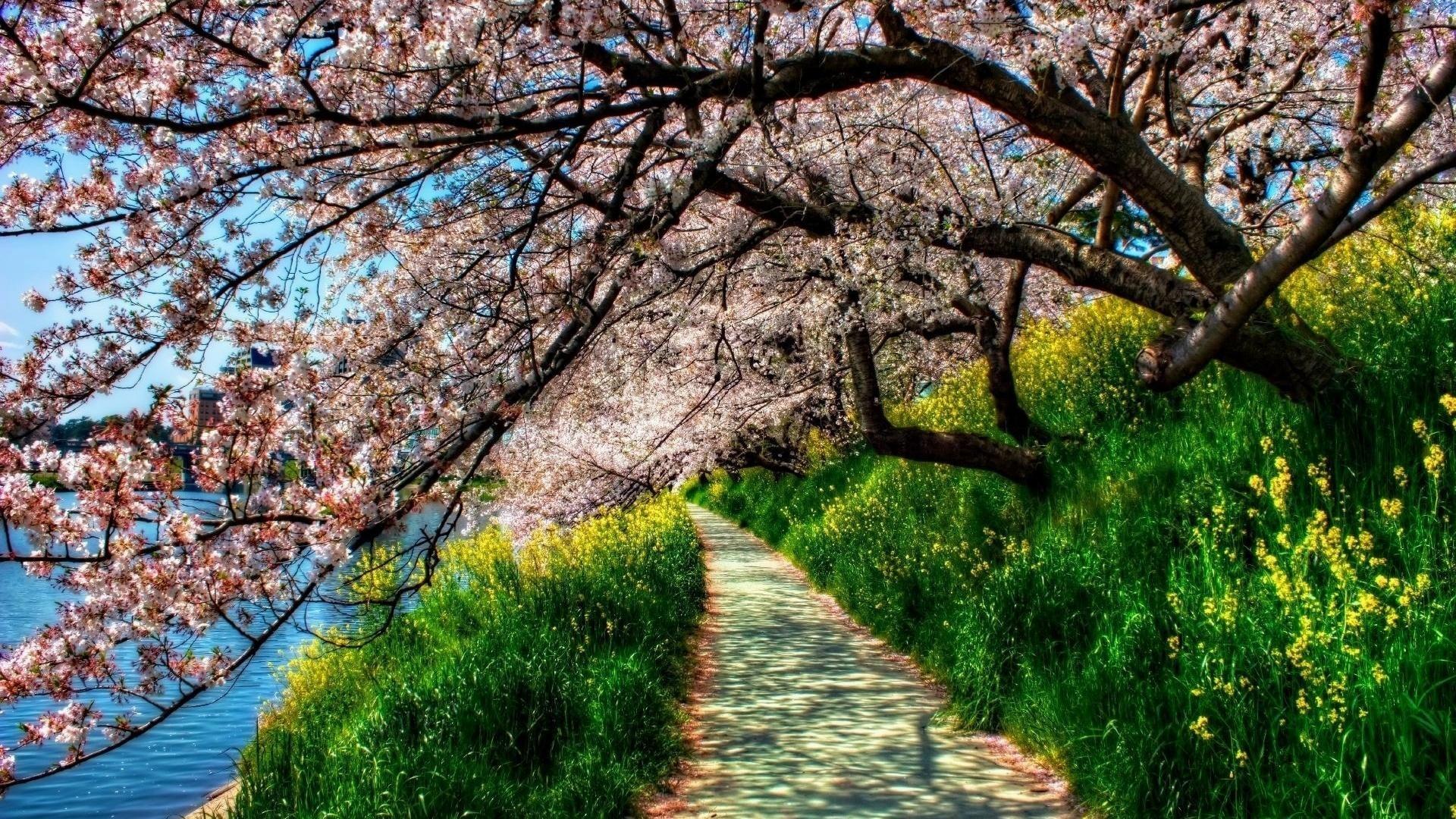 5. springtime-wallpaper-for-desktop4-600×338