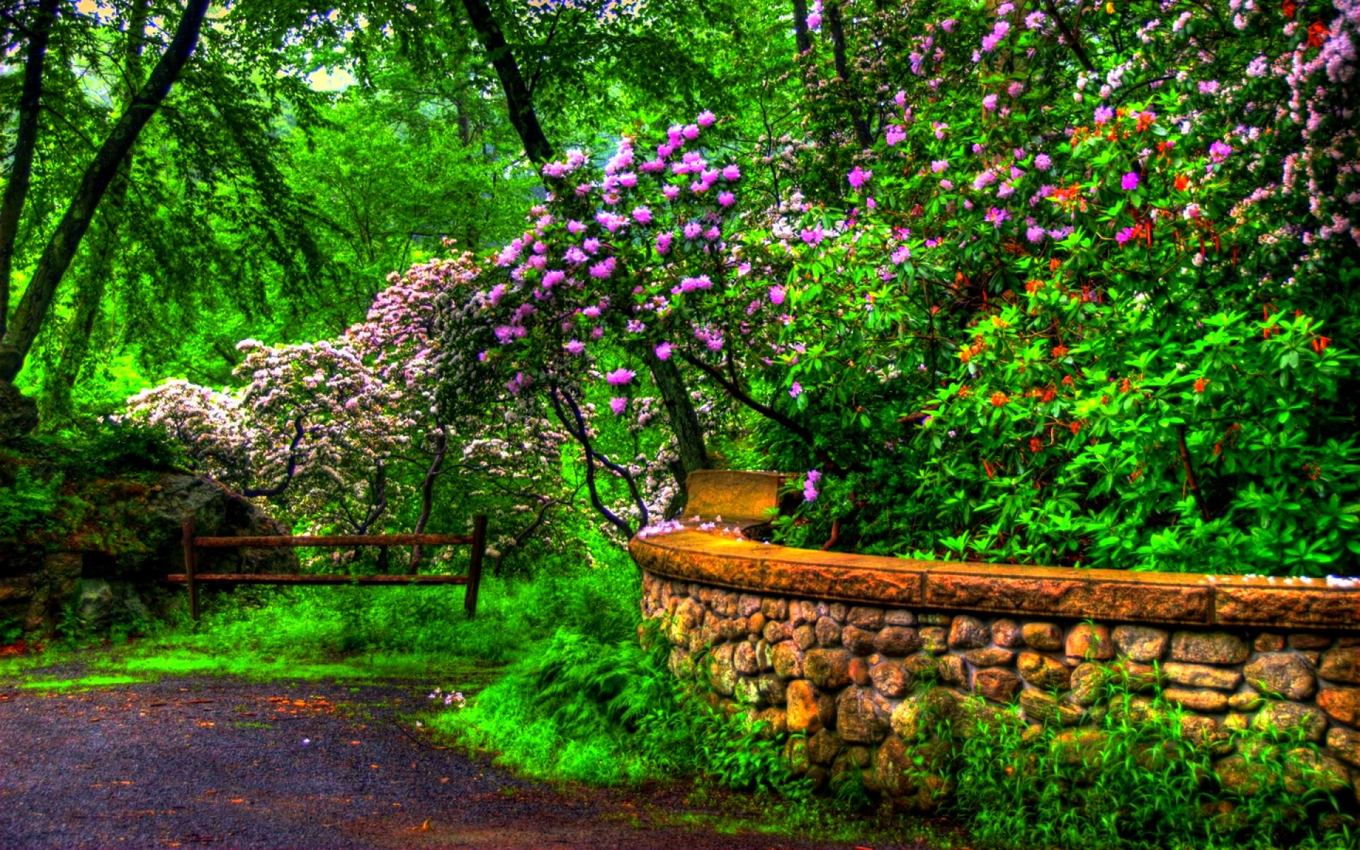Dream Spring 2012 – spring beauty Wallpapers – HD Wallpapers 96881