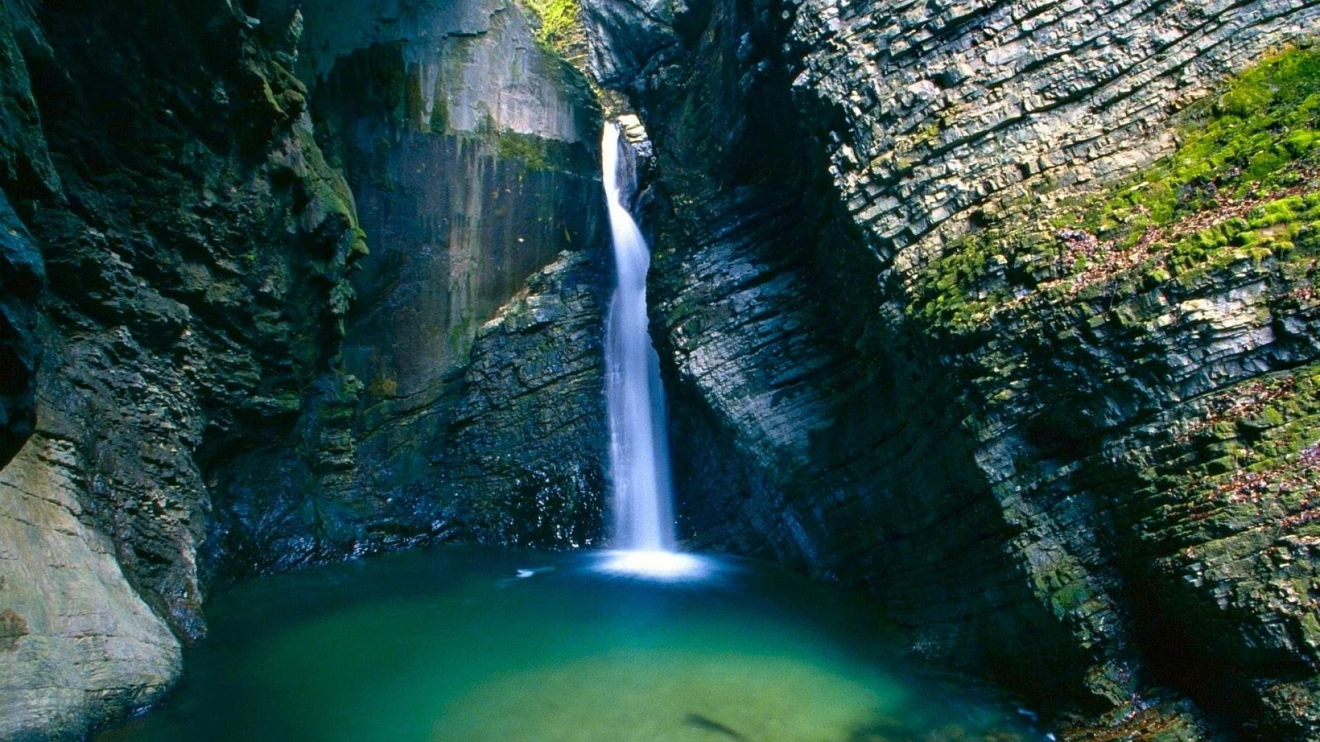 Awesome Nature Image