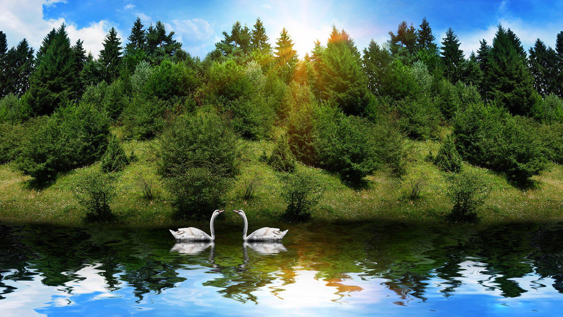 Beautiful Nature Photos HD download.