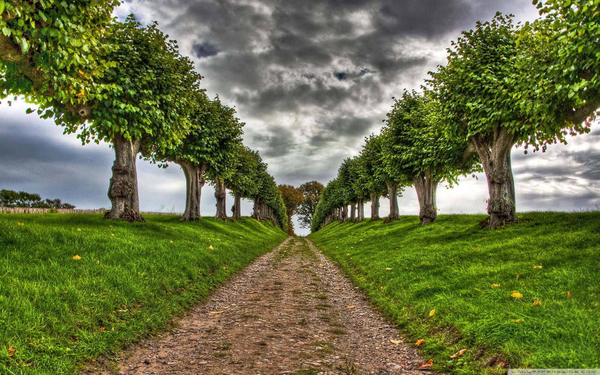 Full HD p Nature Wallpapers, Desktop Backgrounds HD, Pictures Nature Hd  Images Wallpapers Wallpapers)