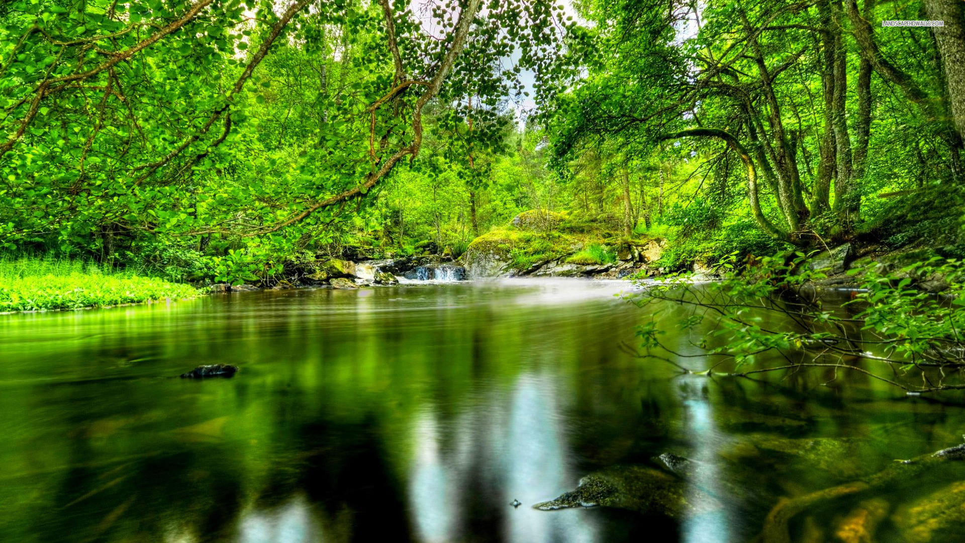 hd-forest-river-nature-wallpapers-1920×1080.jpg (JPEG Image
