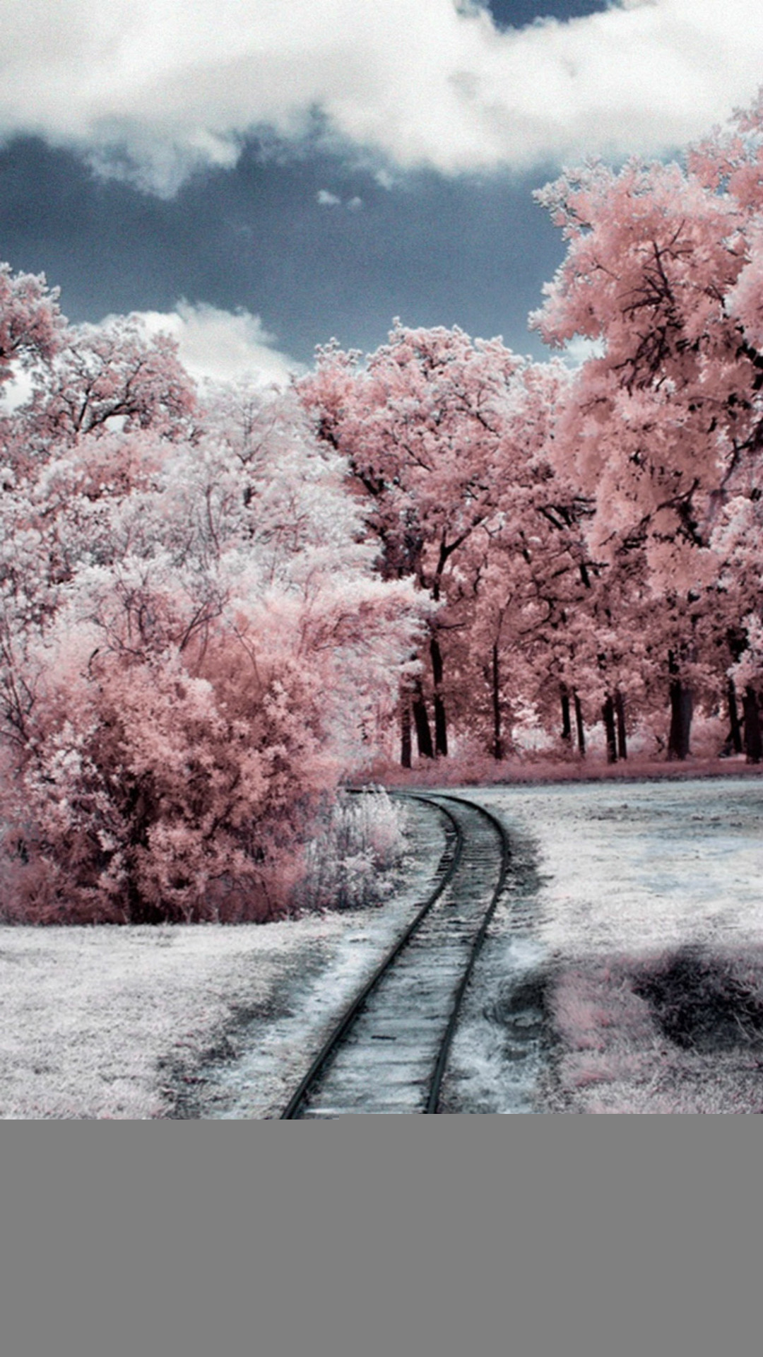 … nature winter through pink woods iphone 8 wallpaper download