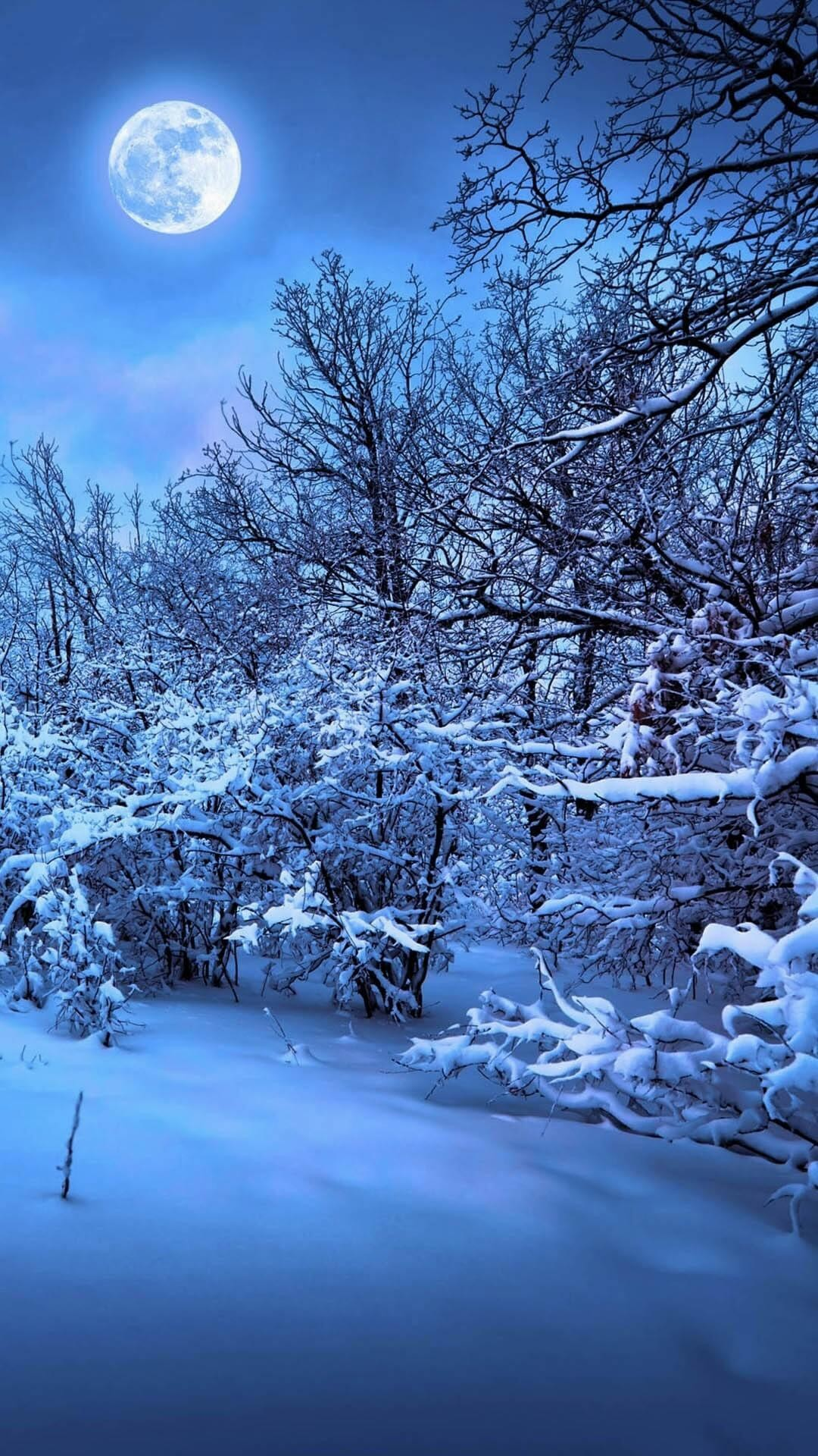 wallpaper.wiki-Winter-Night-Image-for-Iphone-PIC-