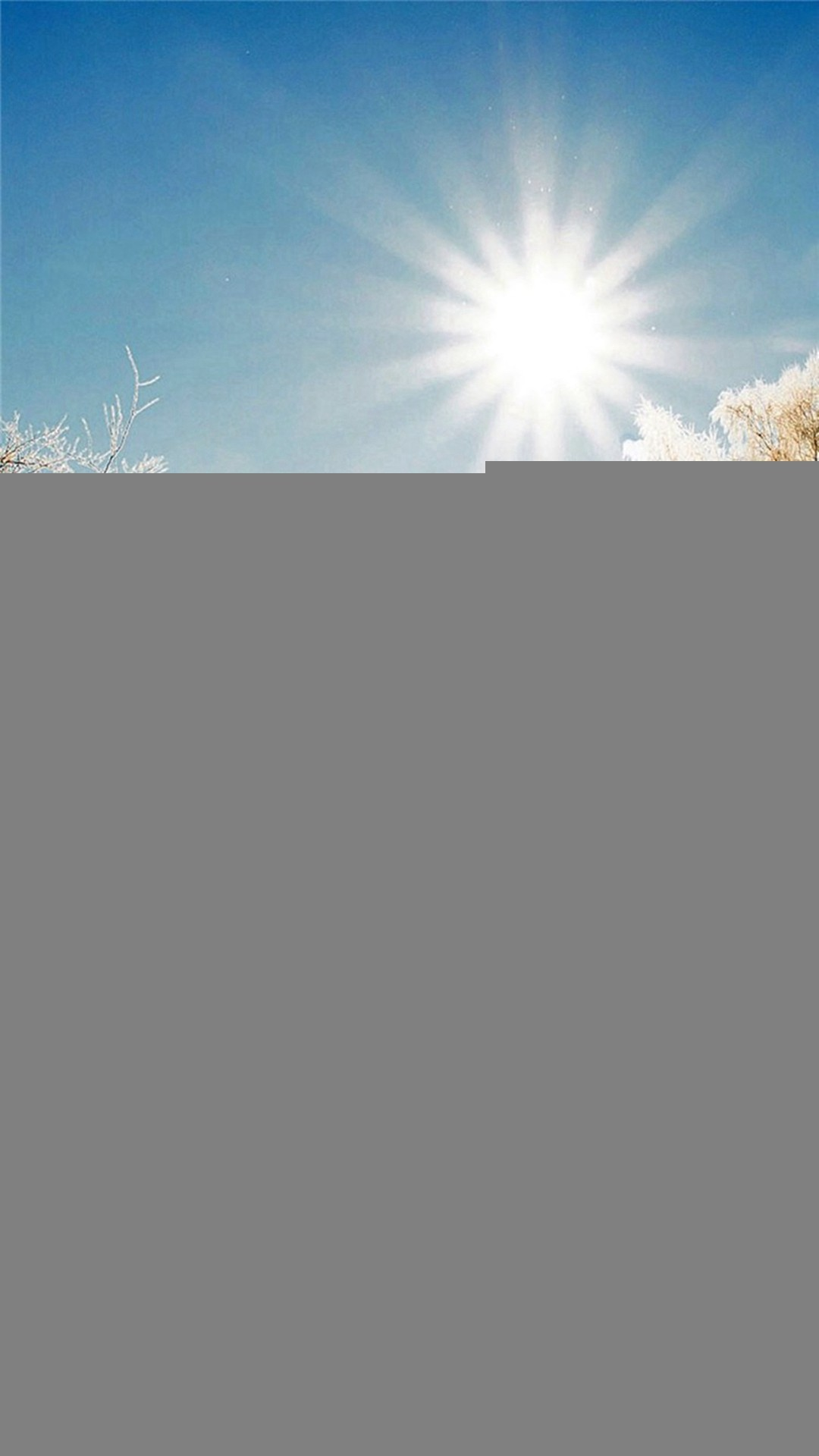 Winter Snowy Sunshine Bright Bench Park iPhone 8 wallpaper