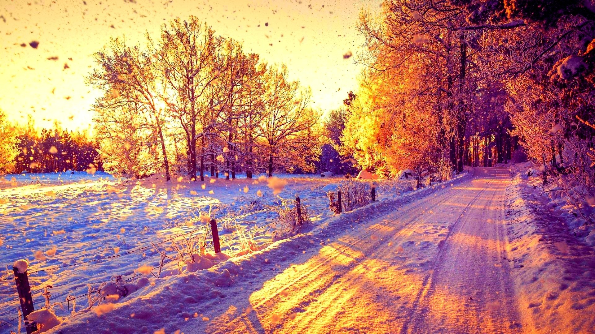 Beautiful Snow Forest Winter Sun Trees Nature Sunny Road Sunset Sunshine  Amazing Wallpaper Iphone 6 Plus