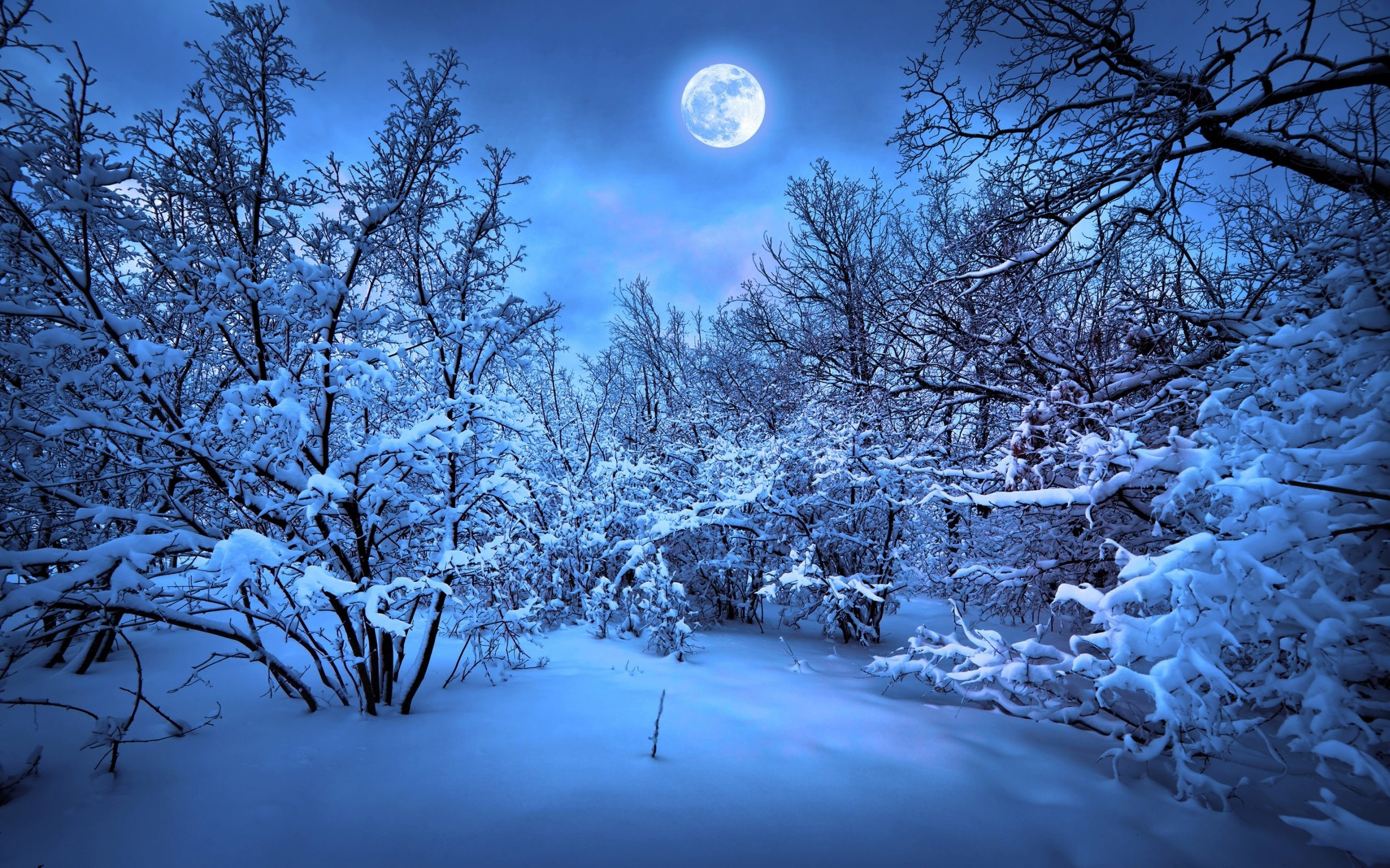 Romantic Winter Wallpaper Images with High Resolution Wallpaper .