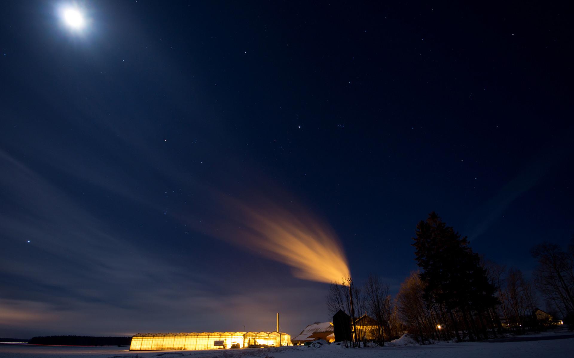 Download Free Winter Night In Moonlight Wallpaper.