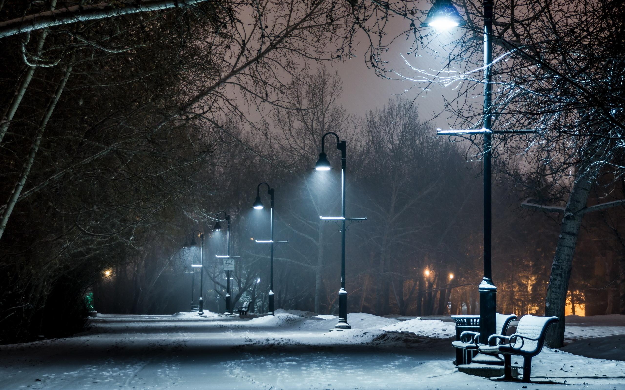 Park At Winter Night wallpaper free
