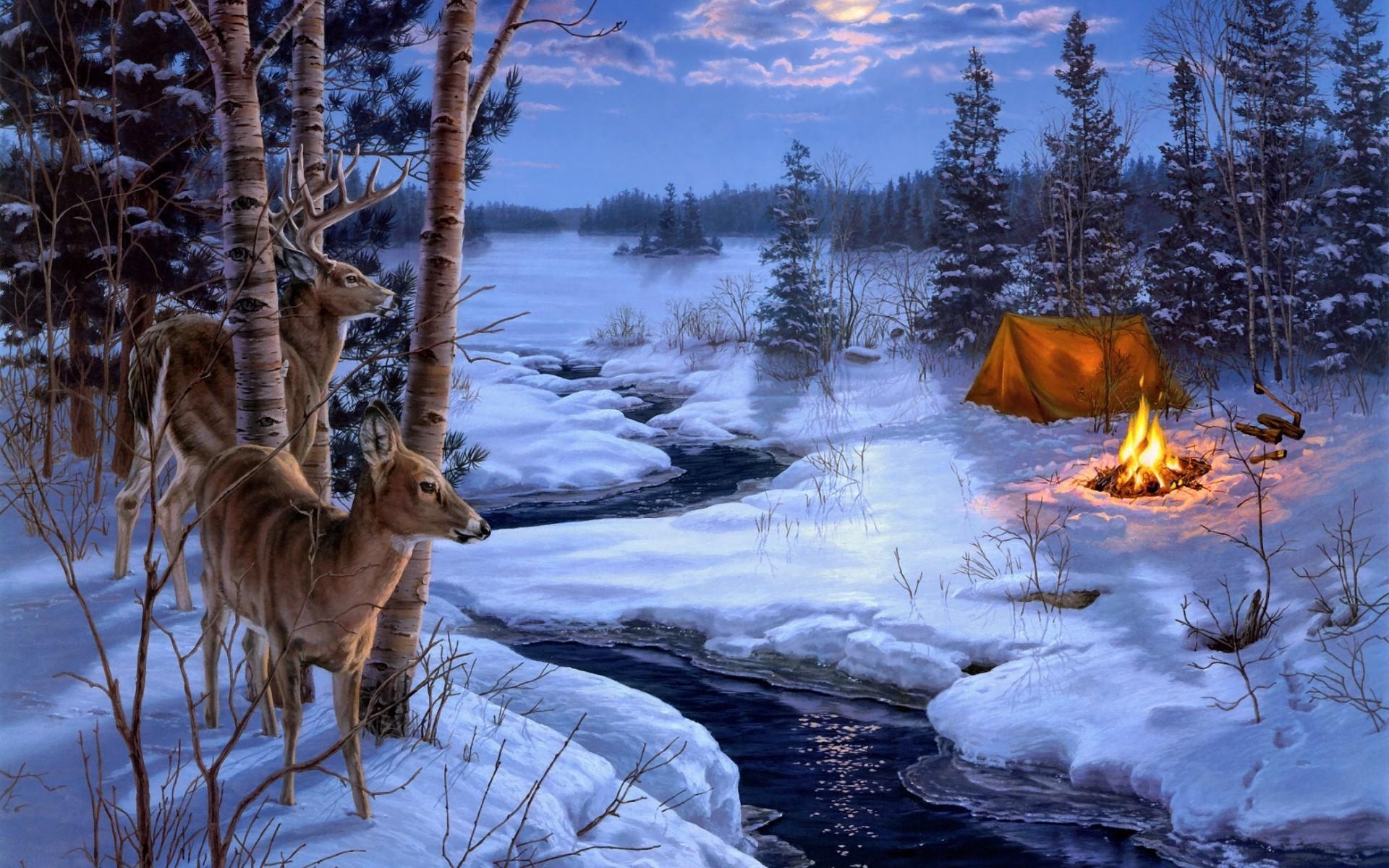 winter snow animals deer wallpaper | | 36751 | WallpaperUP .
