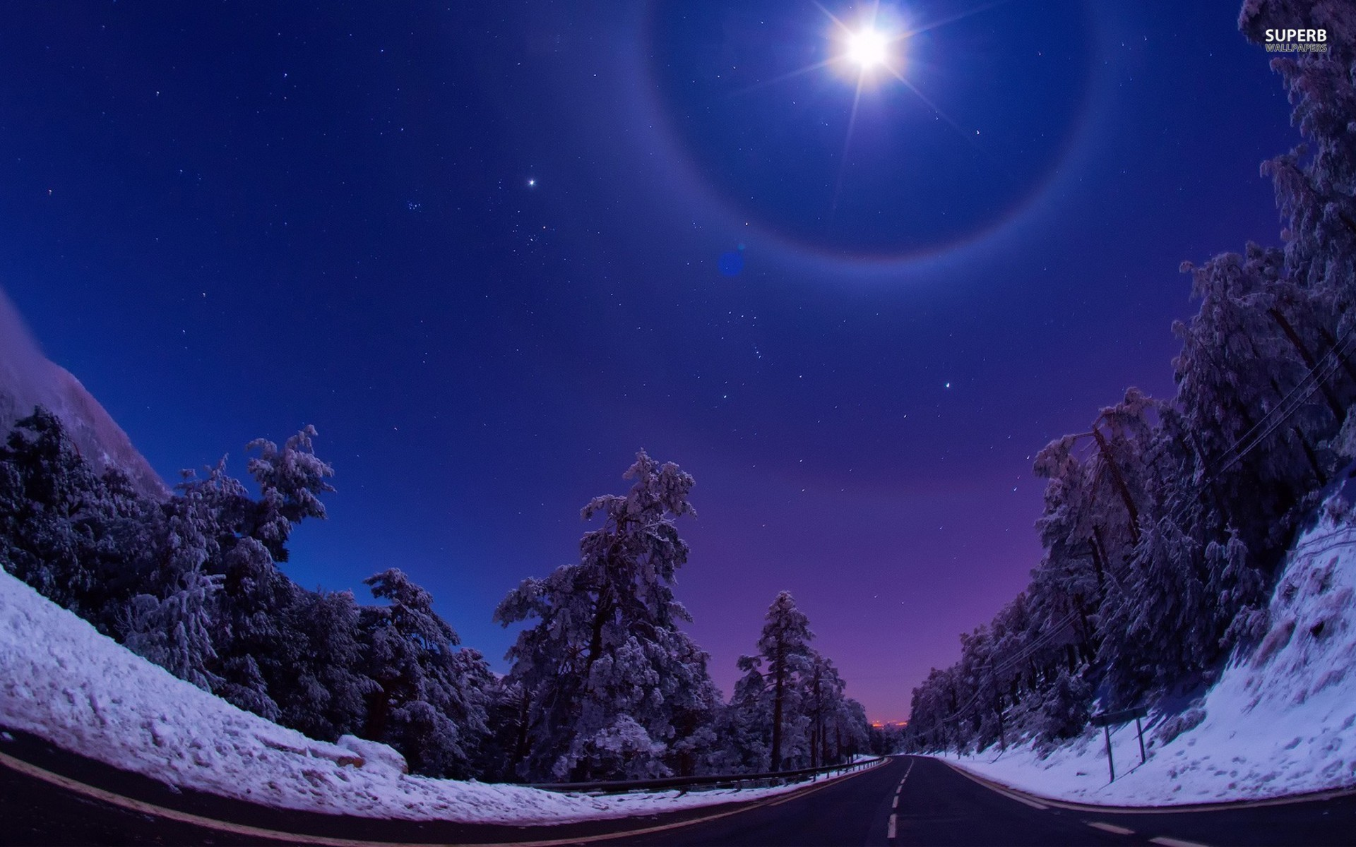Night Star Road Trees Winter wallpapers and stock photos