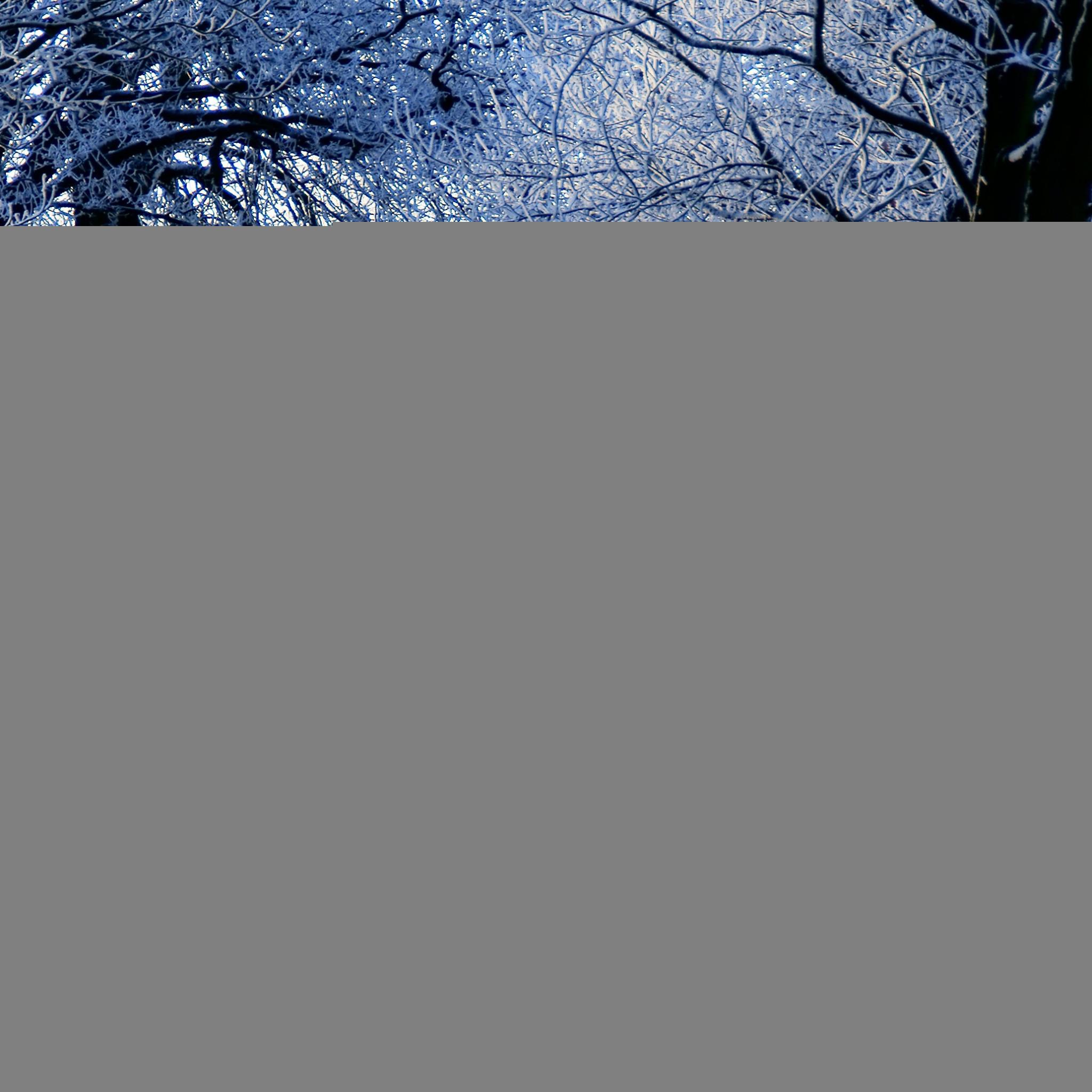 … winter road scene ipad air wallpaper download iphone wallpapers …