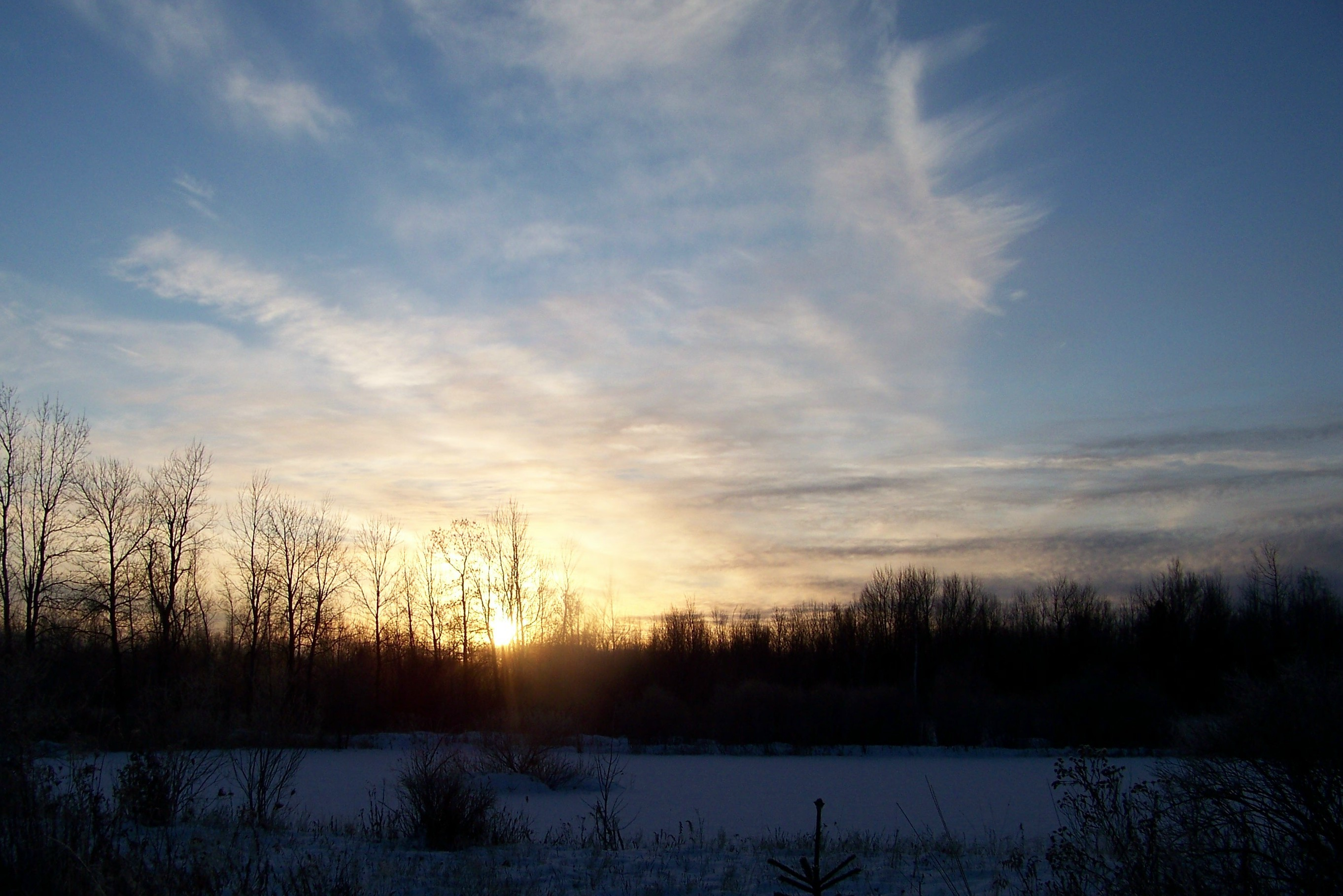 Download Winter Solstice Day Darkly Background Photo Wallpaper #74240  px 840.19 KB Nature &