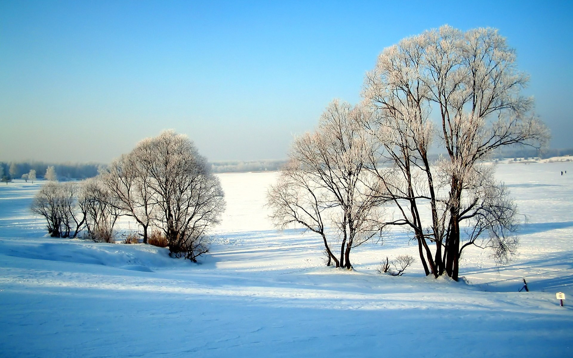 Winter Solstice HD Wallpapers – THIS Wallpaper