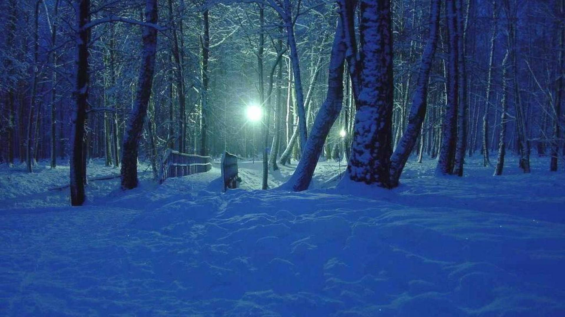 Winter Night HD Desktop Background wallpaper free