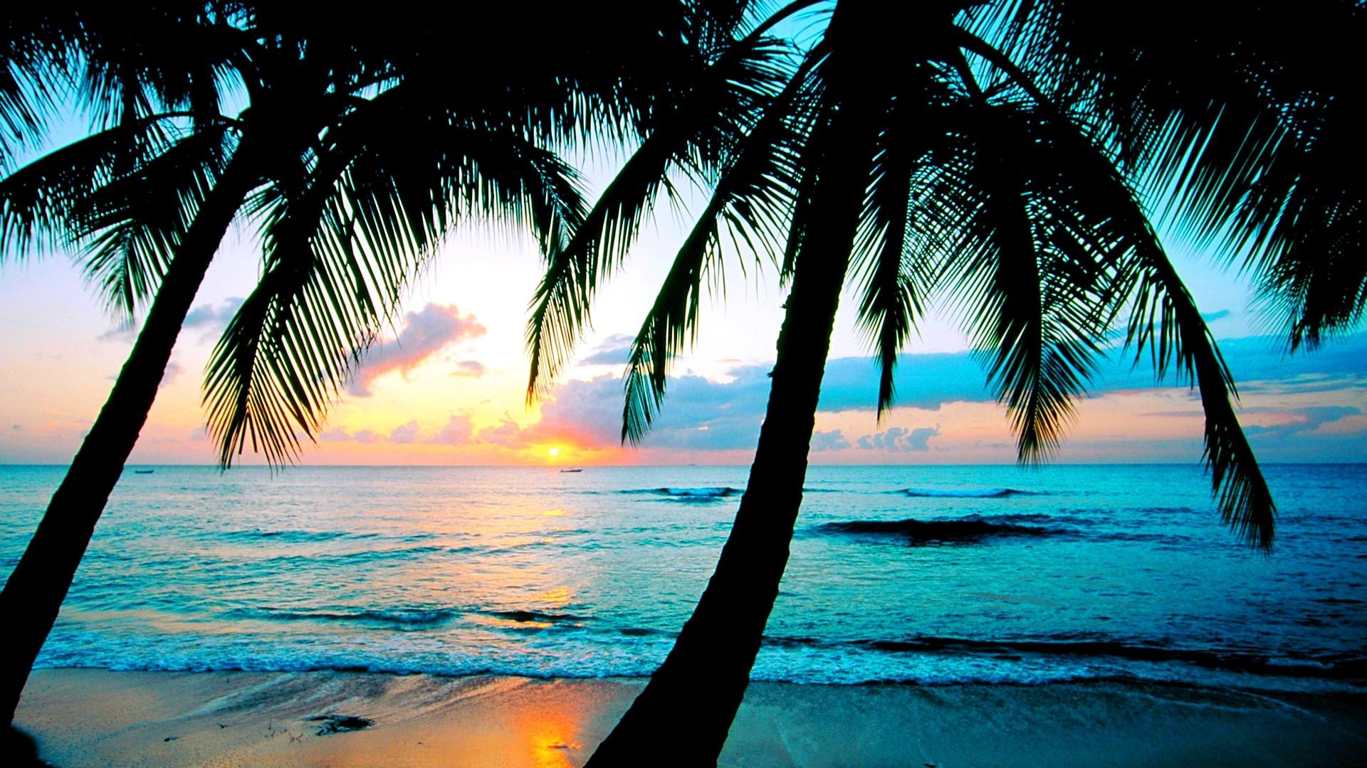 beach desktop wallpapers download   Desktop Backgrounds for Free HD .