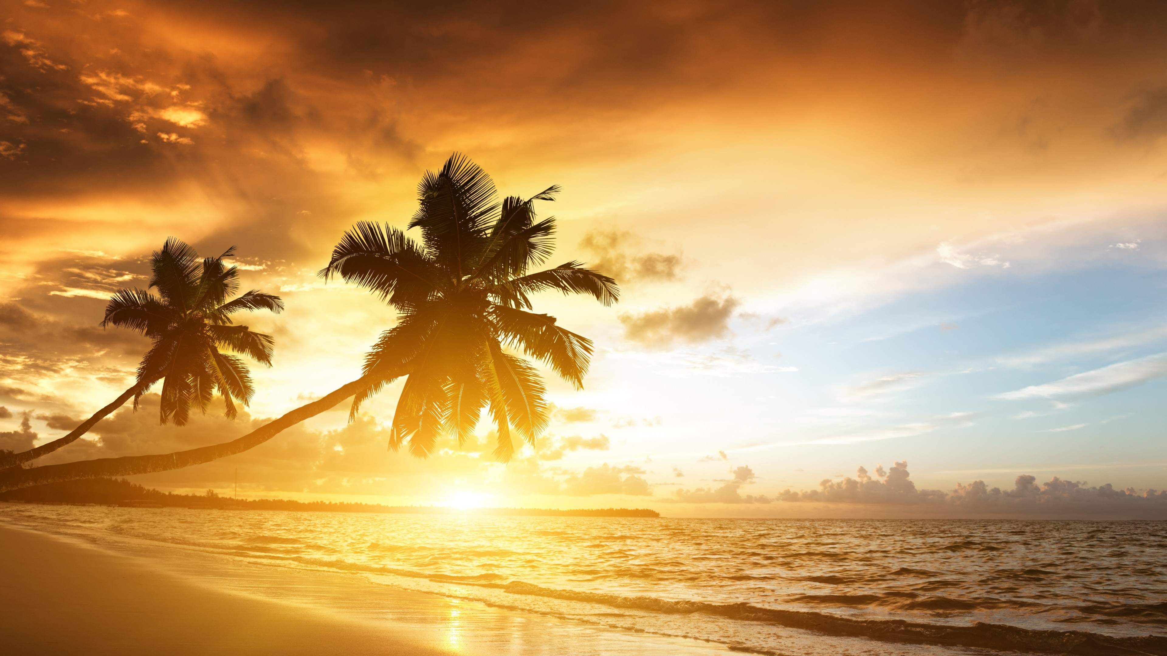 Preview wallpaper beach, tropics, sea, sand, palm trees, sunset, evening