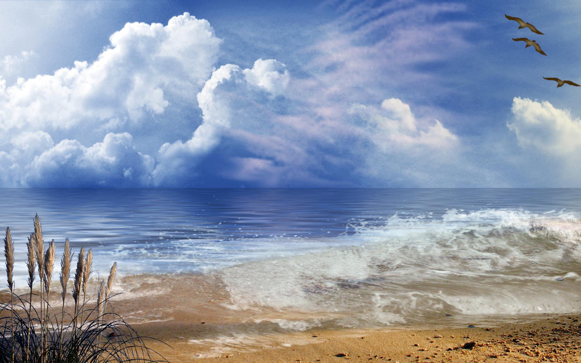 Shoreline Wallpaper