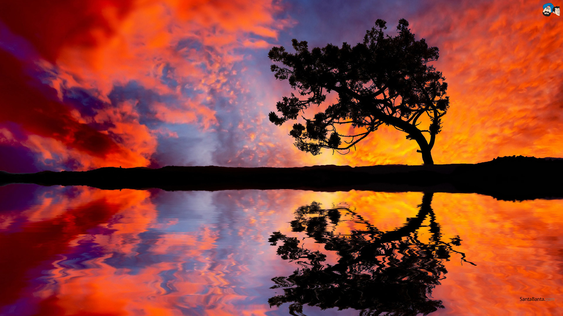 Pretty Sunset Wallpaper
