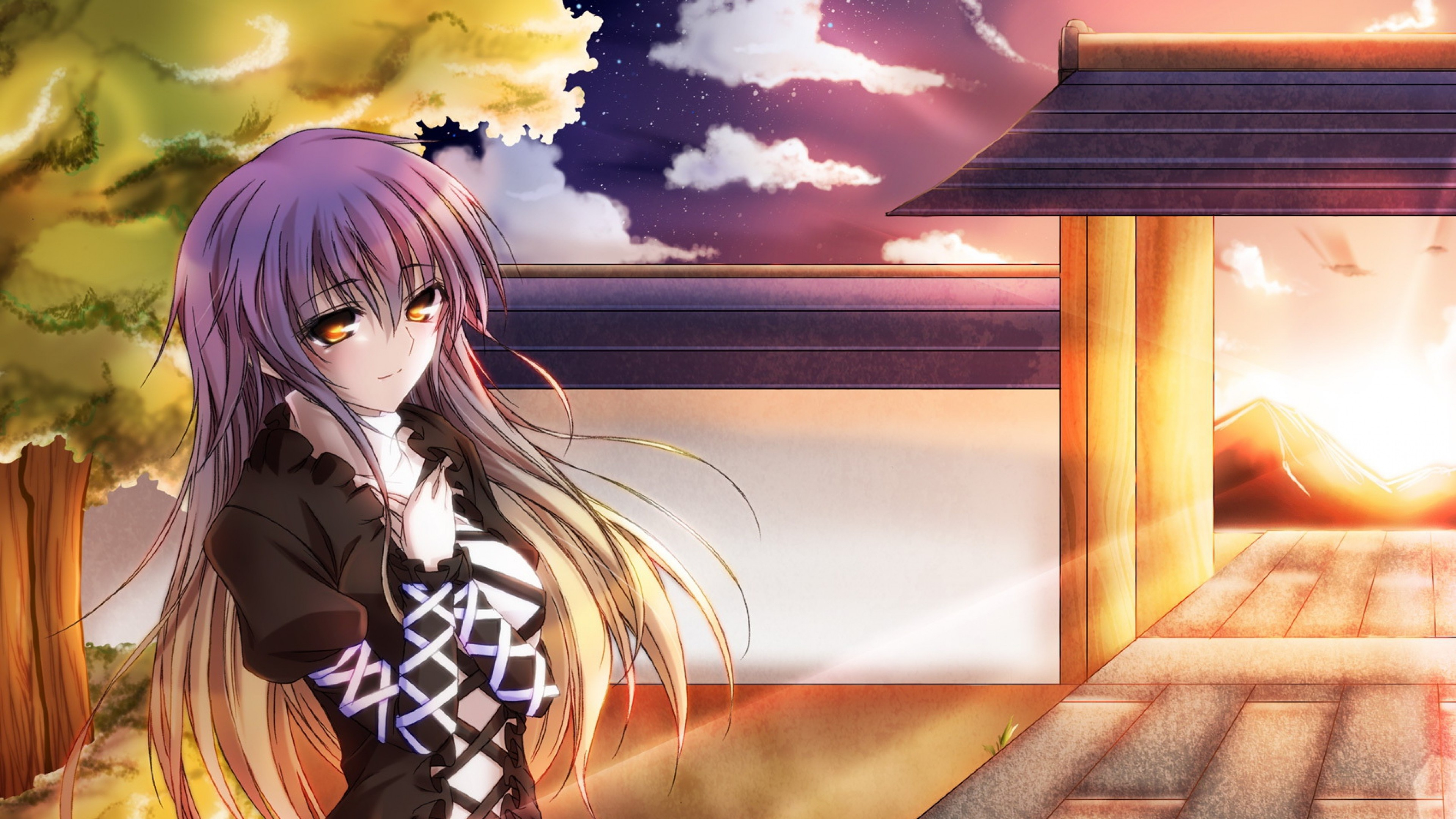 Wallpaper touhou collection, girl, pretty, sunset