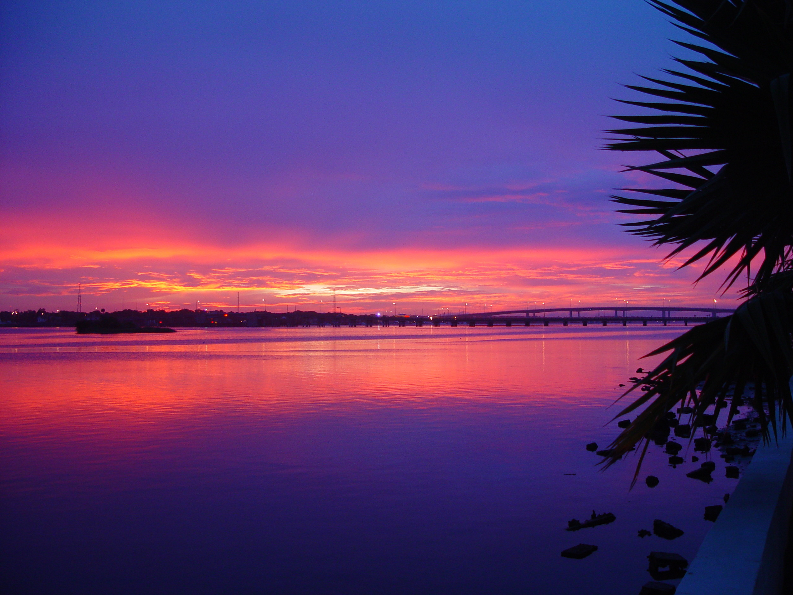 Photo of a beautiful sunset over the Halifax River with a blue, orange,  red, and purple sky in Daytona Beach, FL among the palm trees.