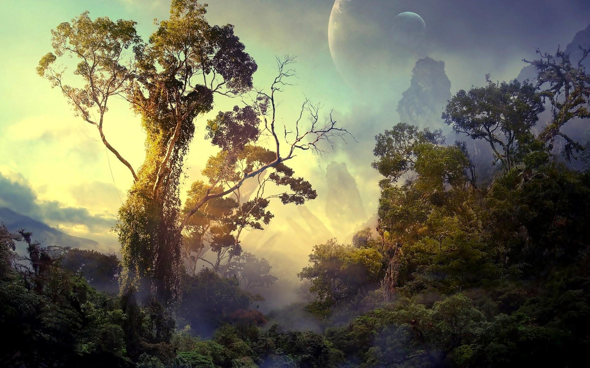 Rainforest Wallpapers Full HD wallpaper search Rainforrest | wallpapers |  Pinterest | Wallpaper