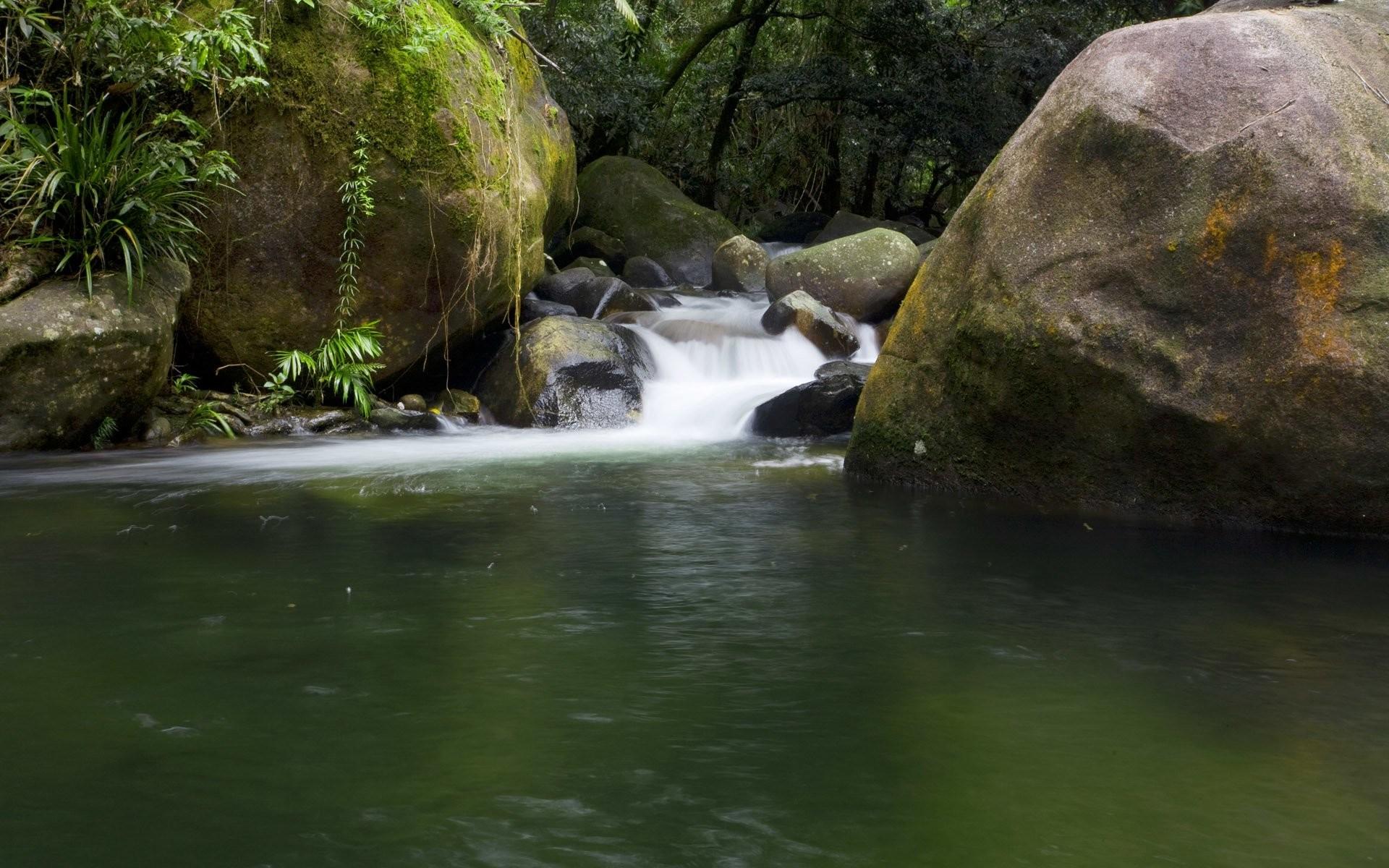 HD Wallpaper | Background ID:435730. Earth Daintree Rainforest