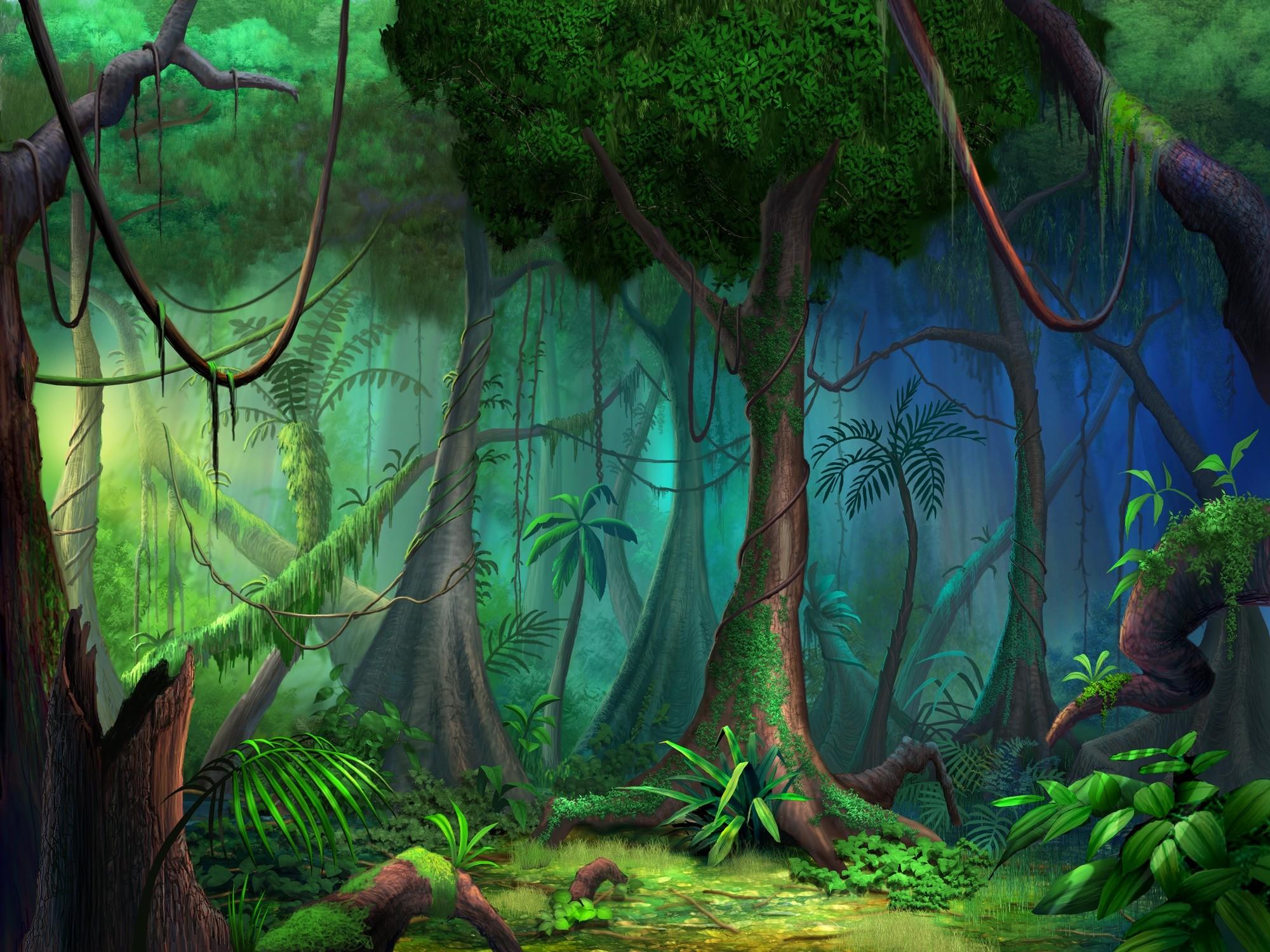 Rainforest Wall Mural Photo Wallpaper