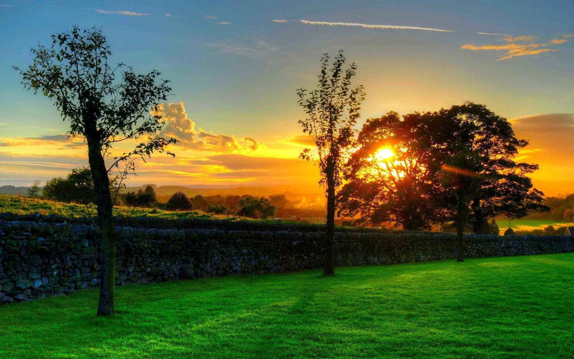 Summer Sunset Wallpaper 7115