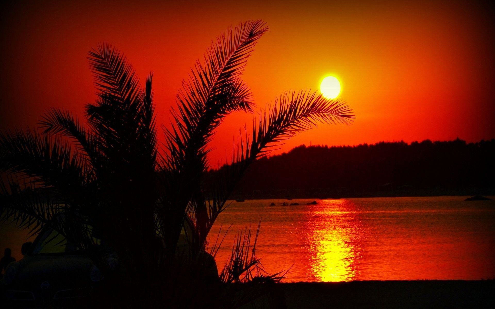 Summer Sunset Wallpapers Hq Images 12 HD Wallpapers   Hdimges.