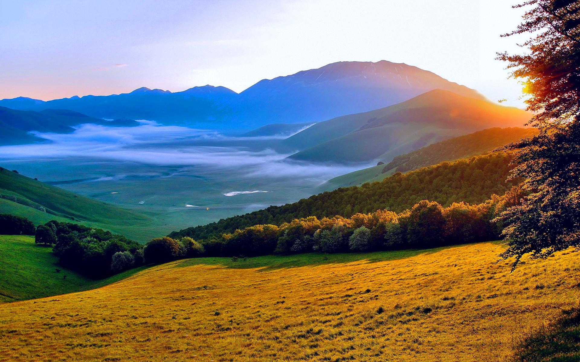 Summer sunset landscape