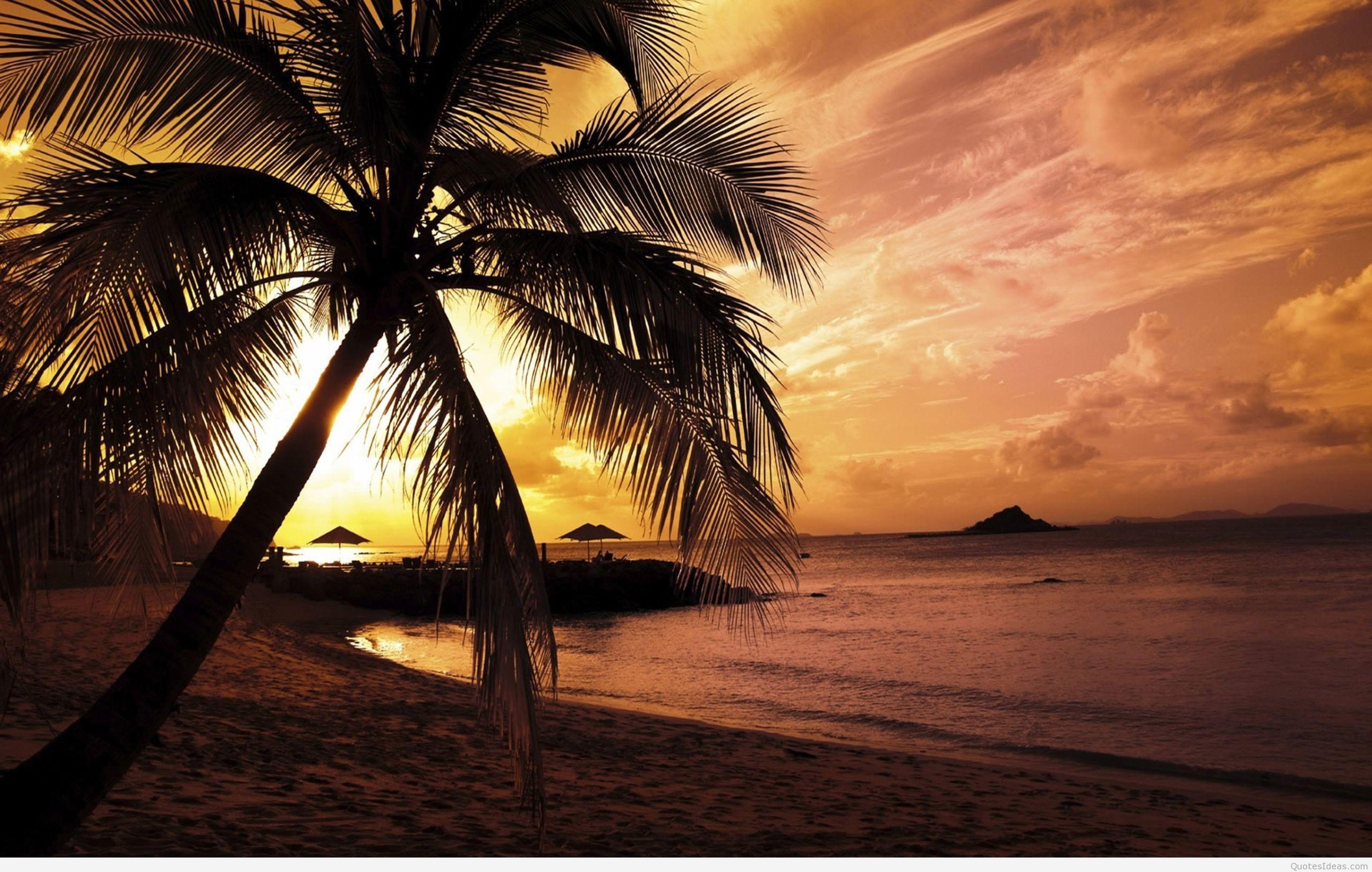 Nature Summer Sunset Beach New