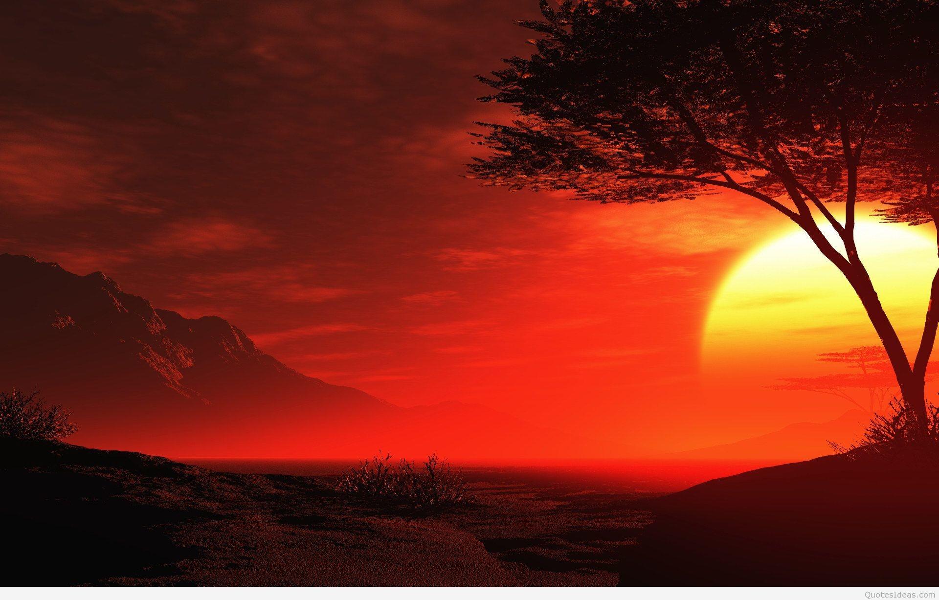 Amazing beautiful summer sunset hd