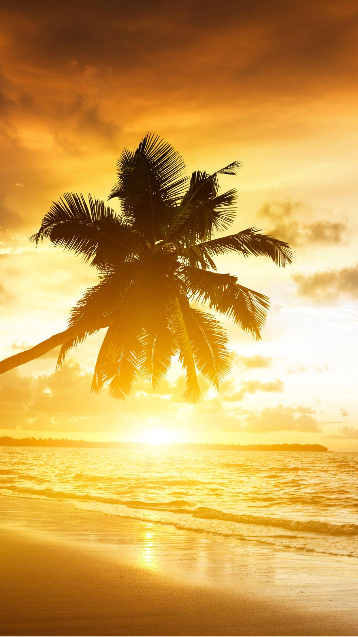 Summer-Sunset-iPhone-3Wallpapers-Parallax